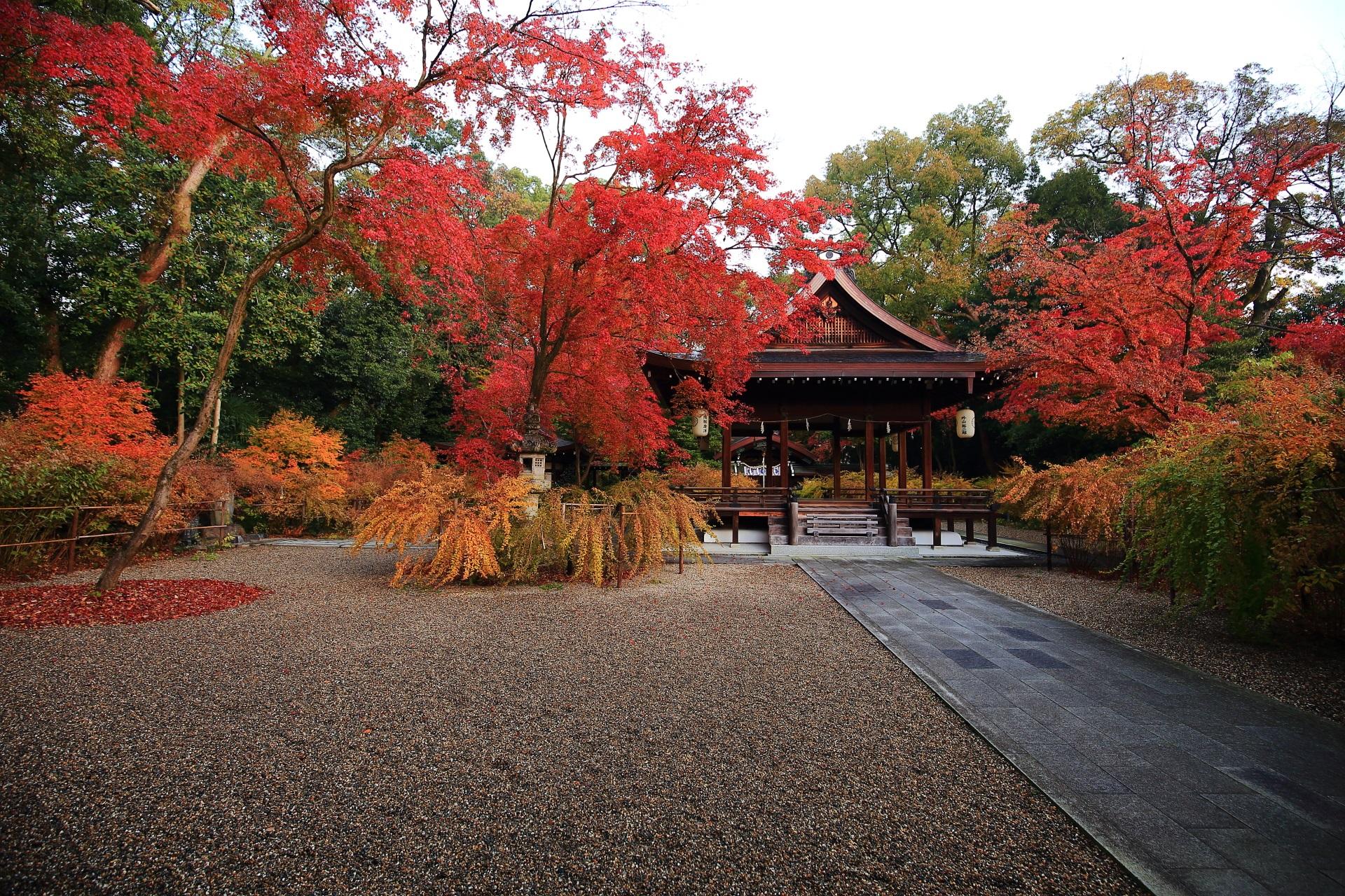 多彩な秋色と多様な木々につつまれる梨木神社