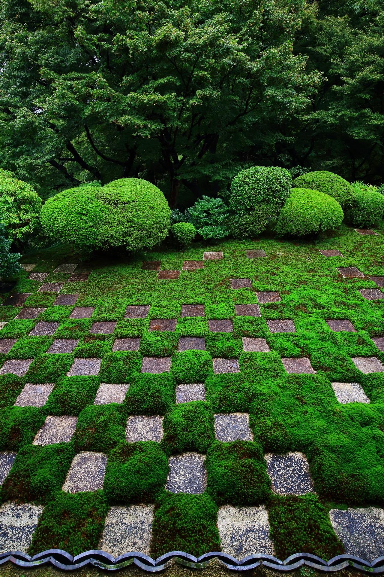 素晴らしい東福寺の方丈庭園と情景
