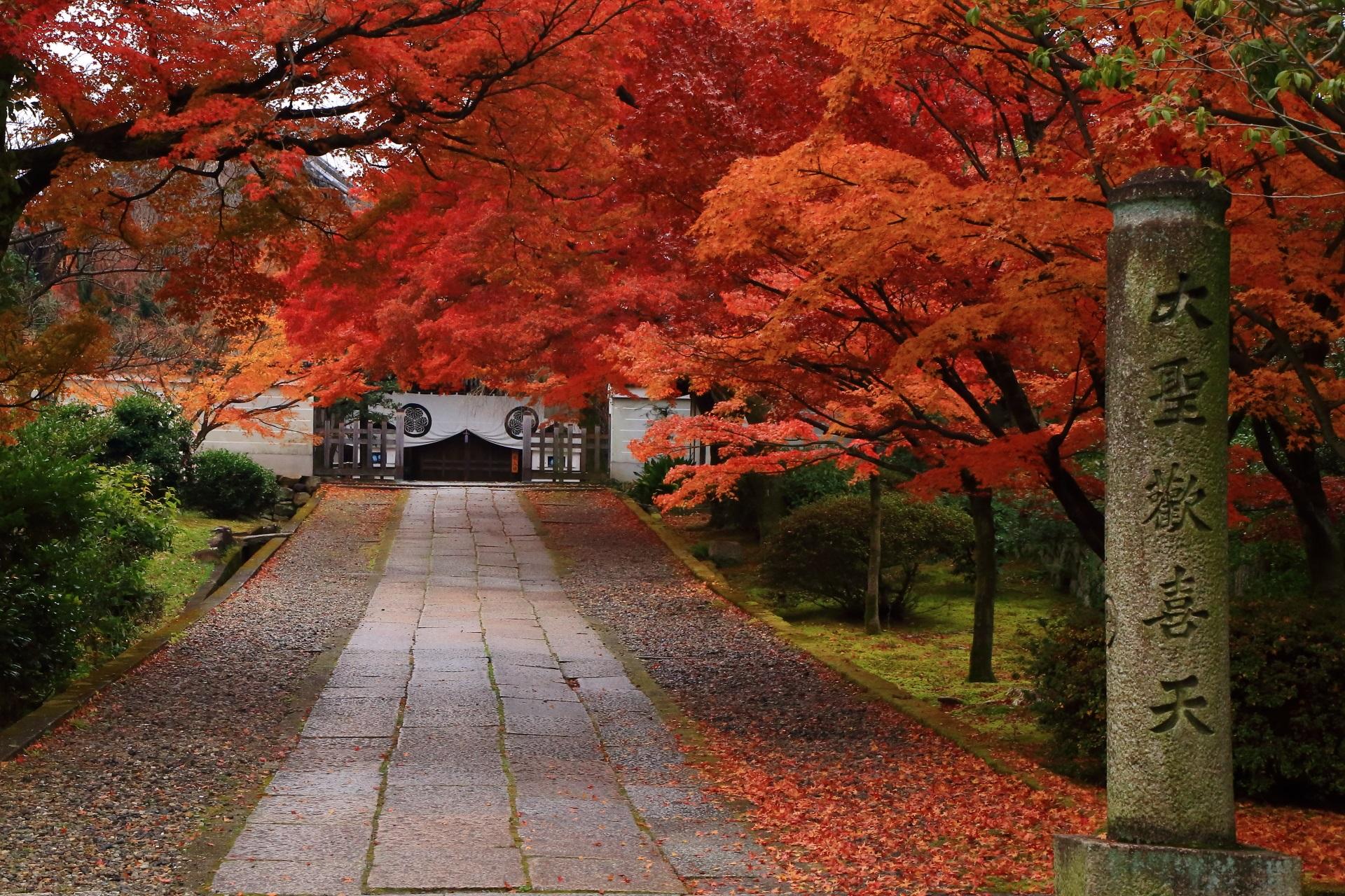 養源院の大聖歓喜天の石柱と溢れる紅葉