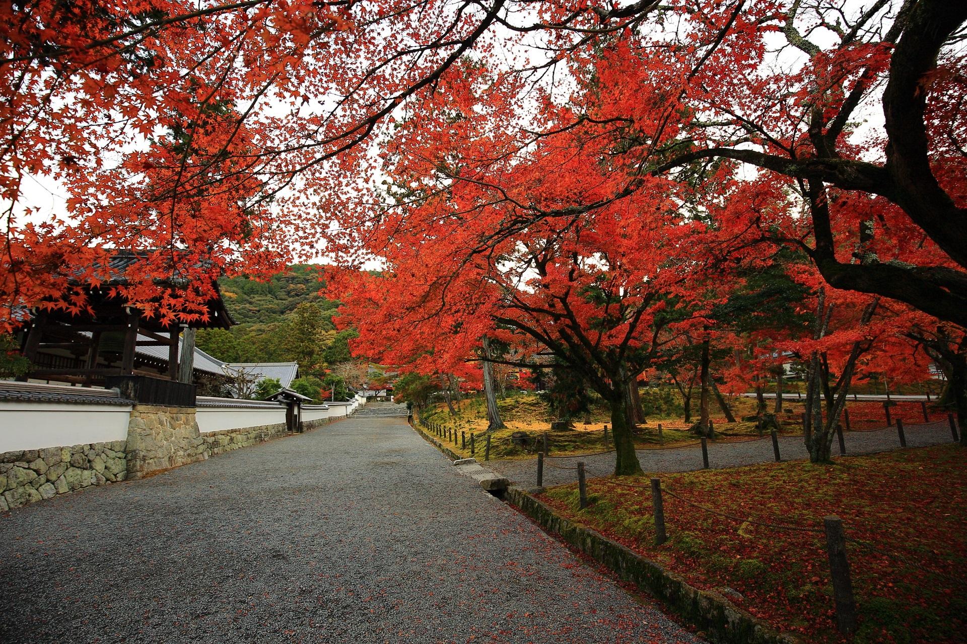 南禅僧堂前の紅葉