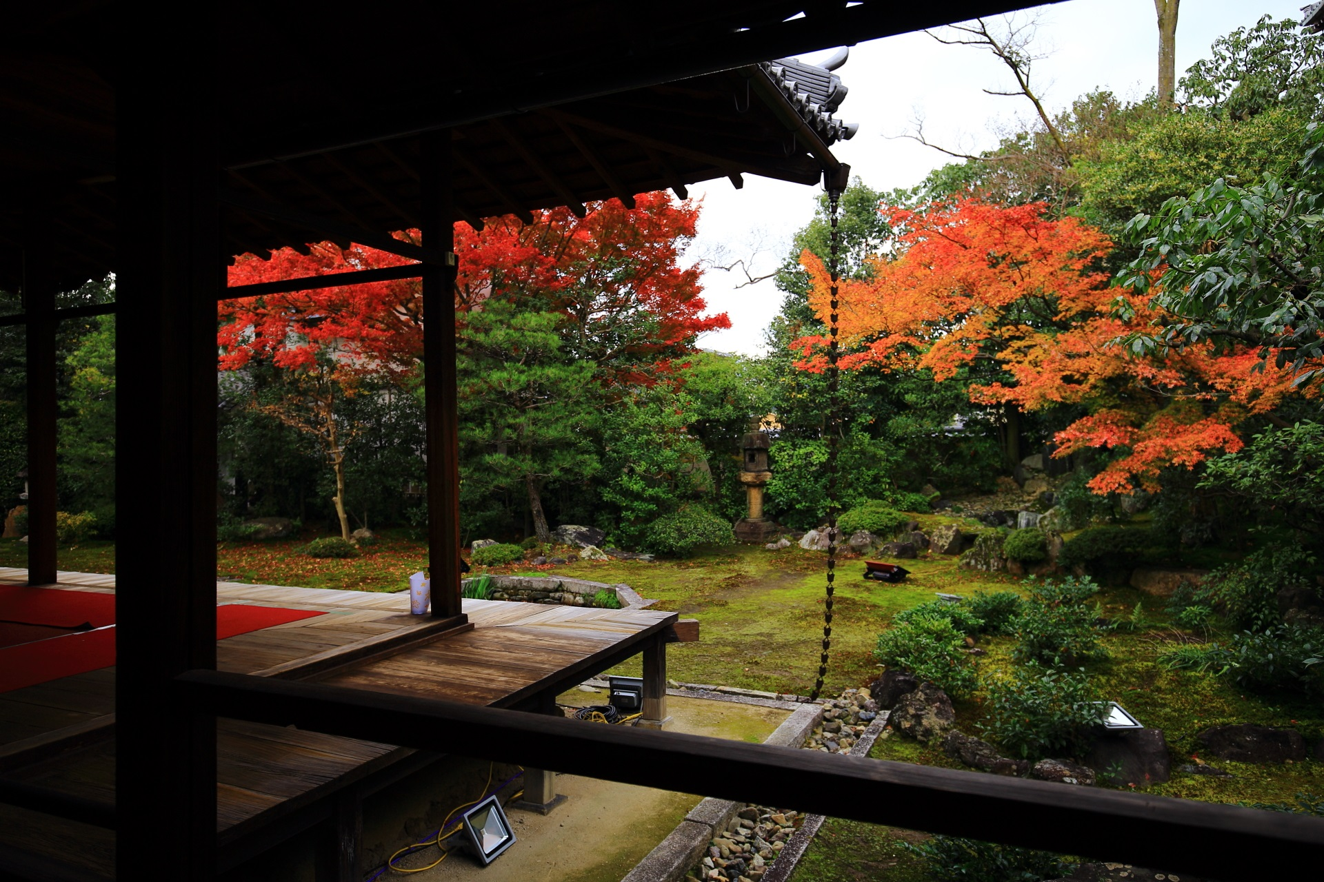 回廊から眺めた紅葉の色づく巴の庭