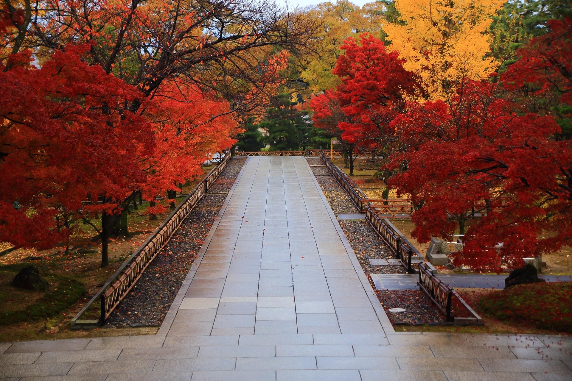 智積院の美しすぎる極上の紅葉の参道