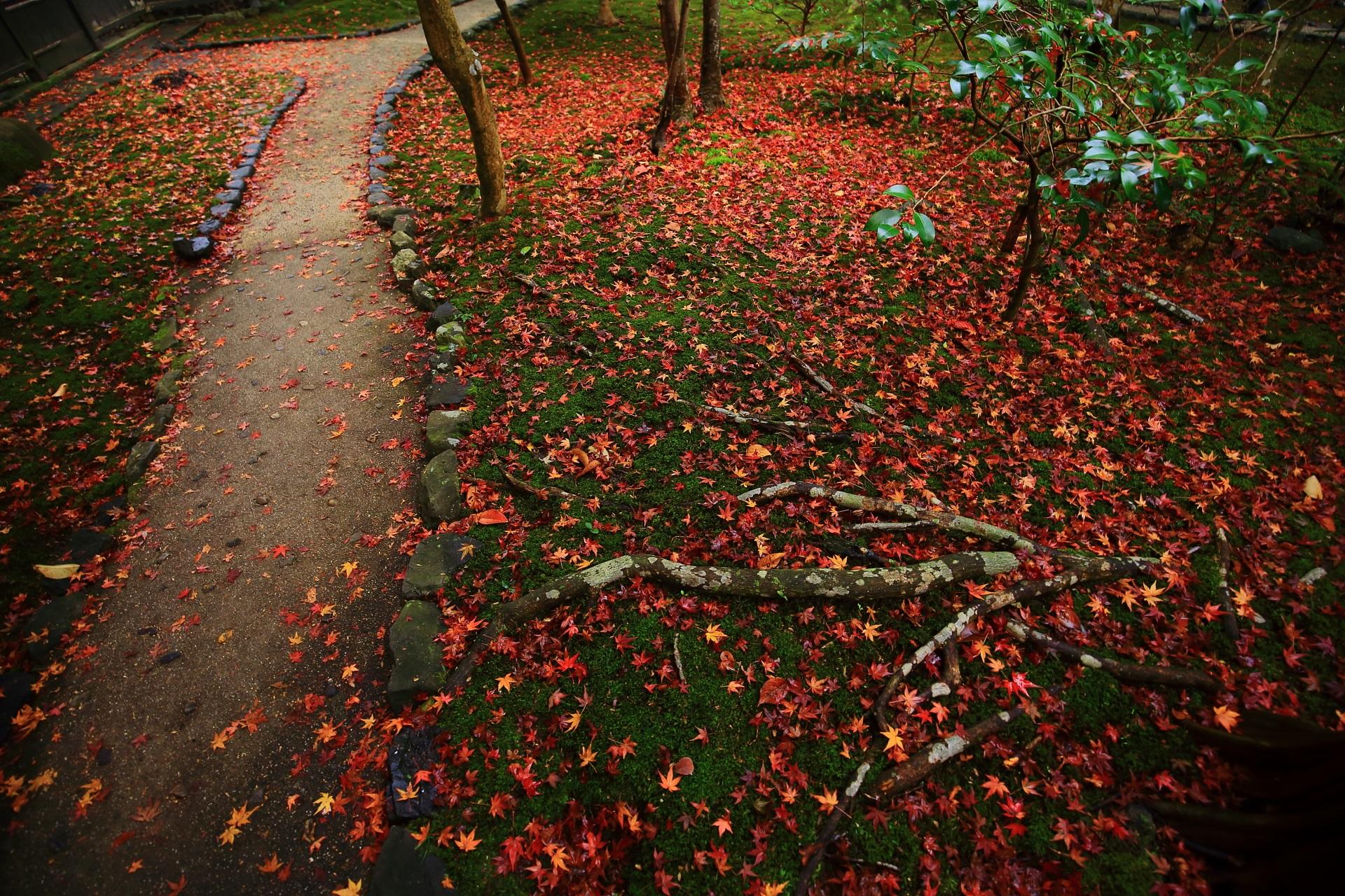 趣きある庭園を染める多彩な散り紅葉