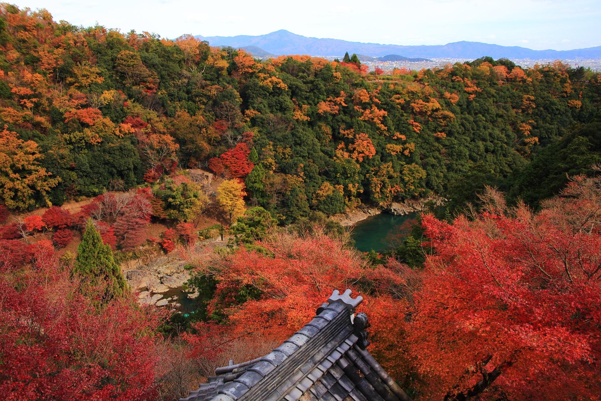 絶妙のバランスや色合いの大悲閣の紅葉と嵐山の紅葉