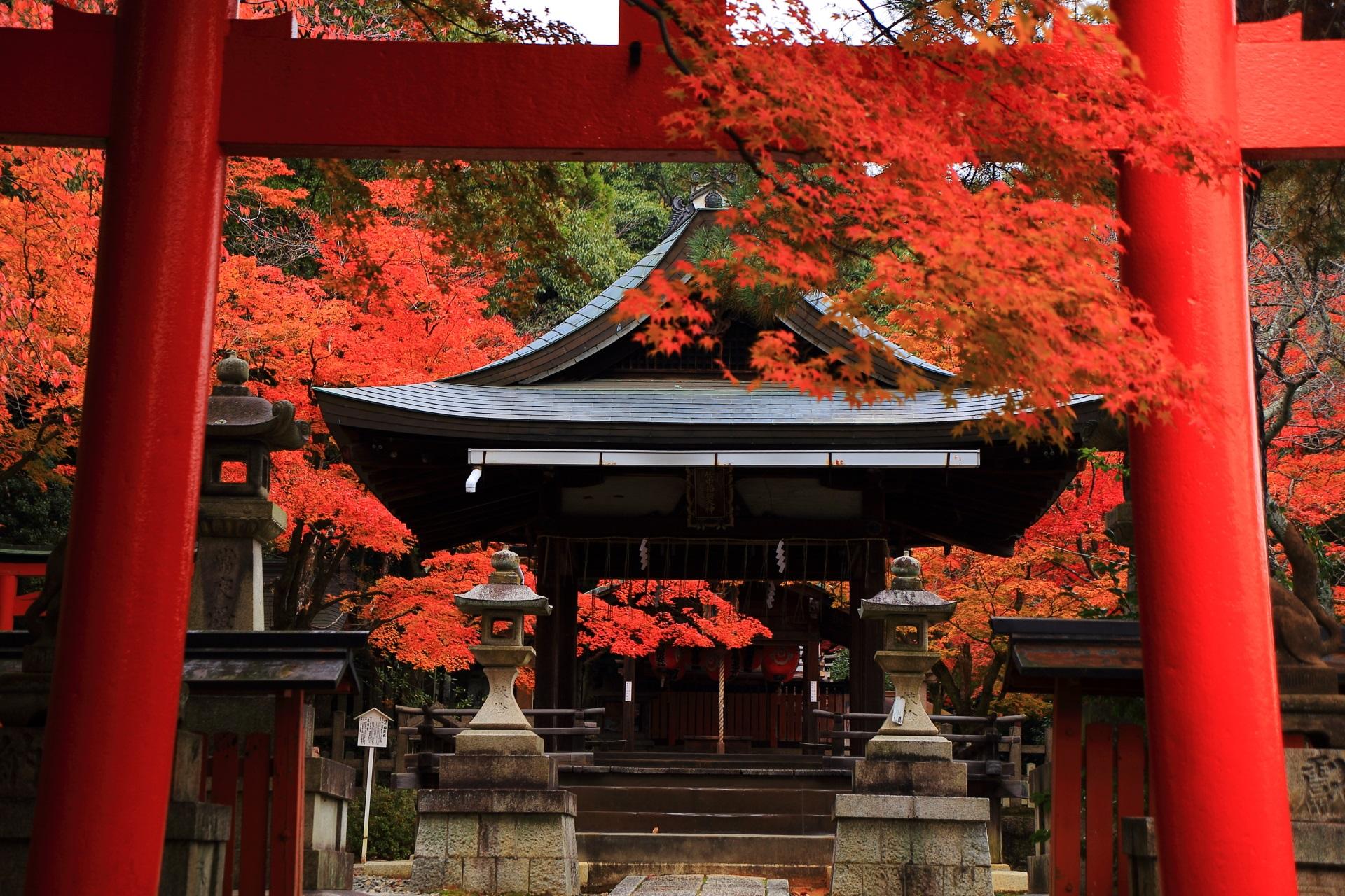溢れる鮮やかな秋色につつまれる竹中稲荷神社の拝殿