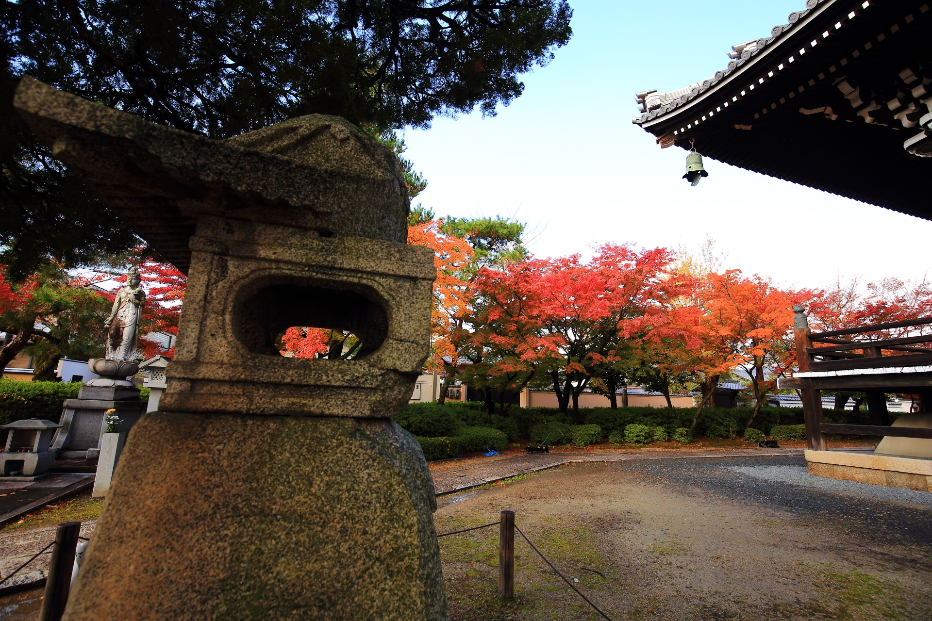 妙顕寺の本堂を囲むように華やぐ淡い紅葉