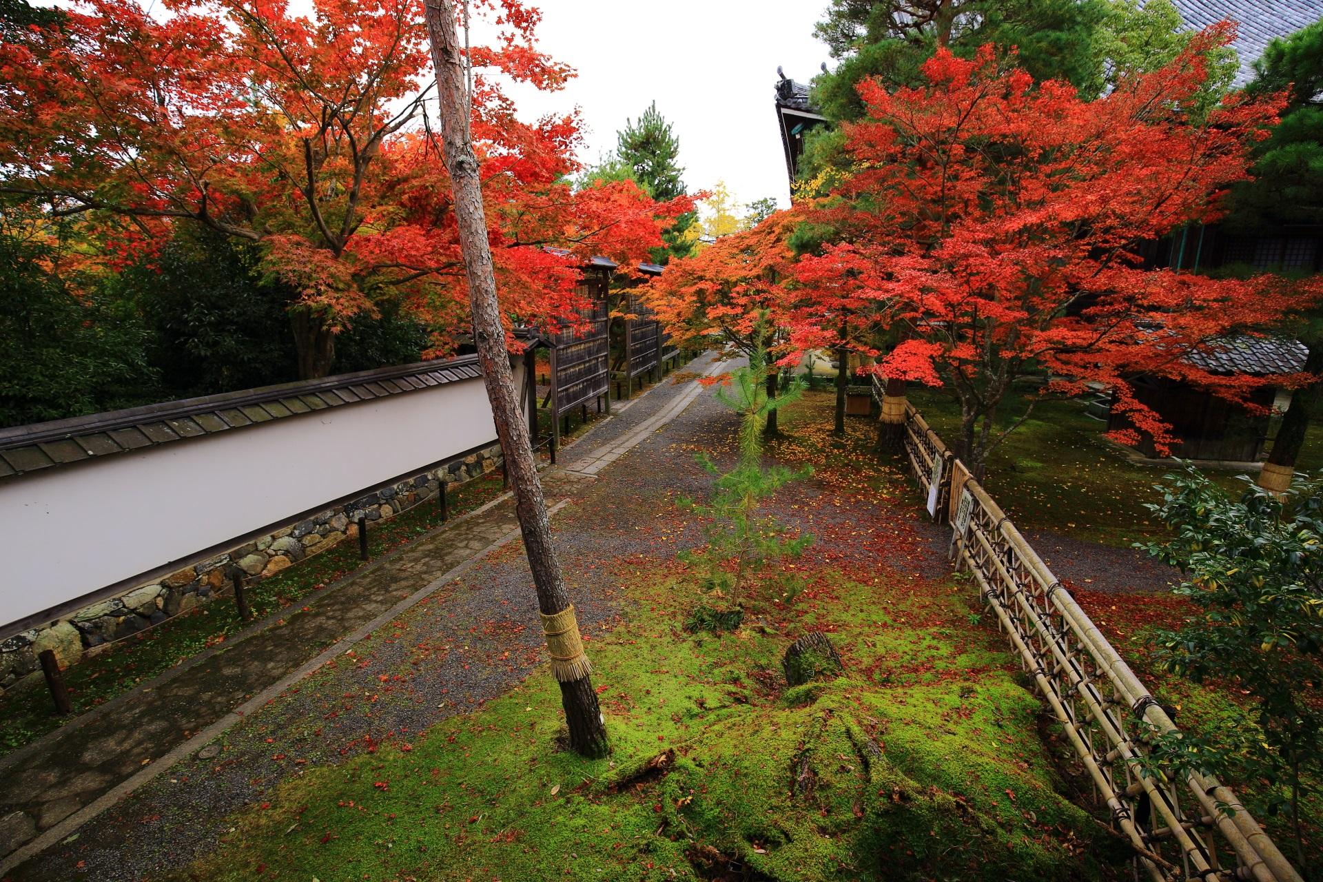 回廊から眺めた本堂裏(本堂東側)の参道と紅葉