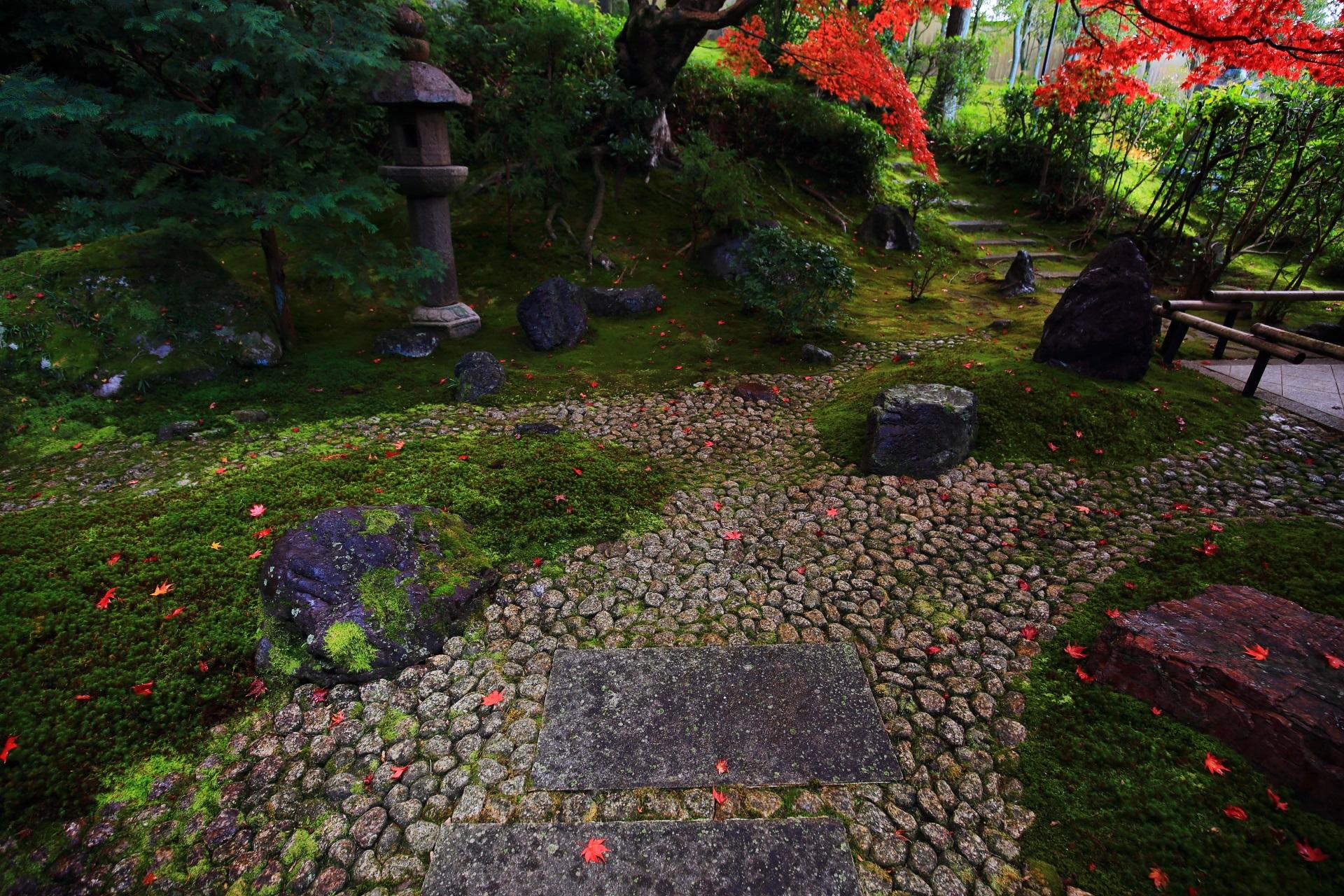 苔や石の地面に風情たっぷりに散る鮮やかな紅葉