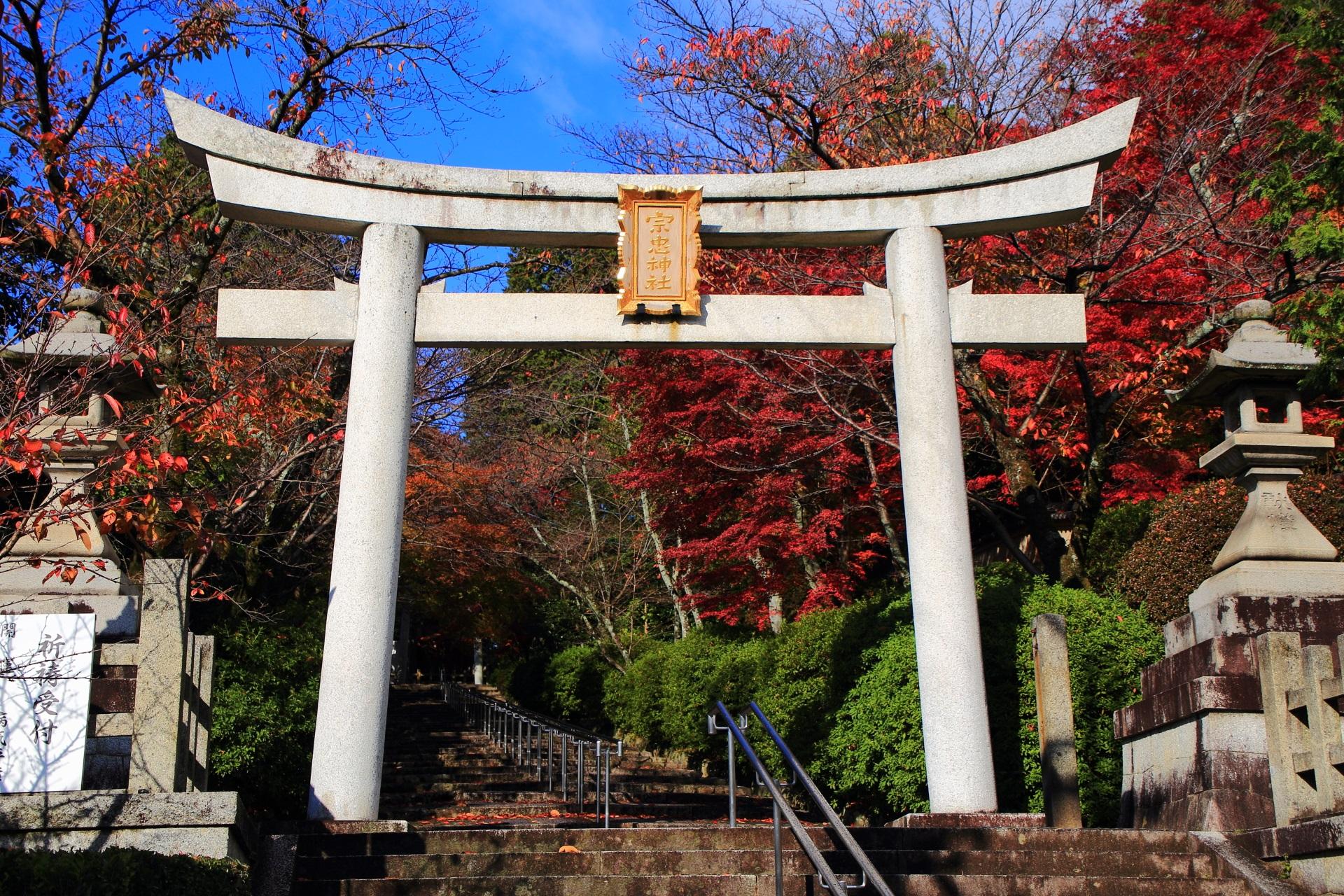 宗忠神社の鮮やかな秋色が続く石段と鳥居の紅葉