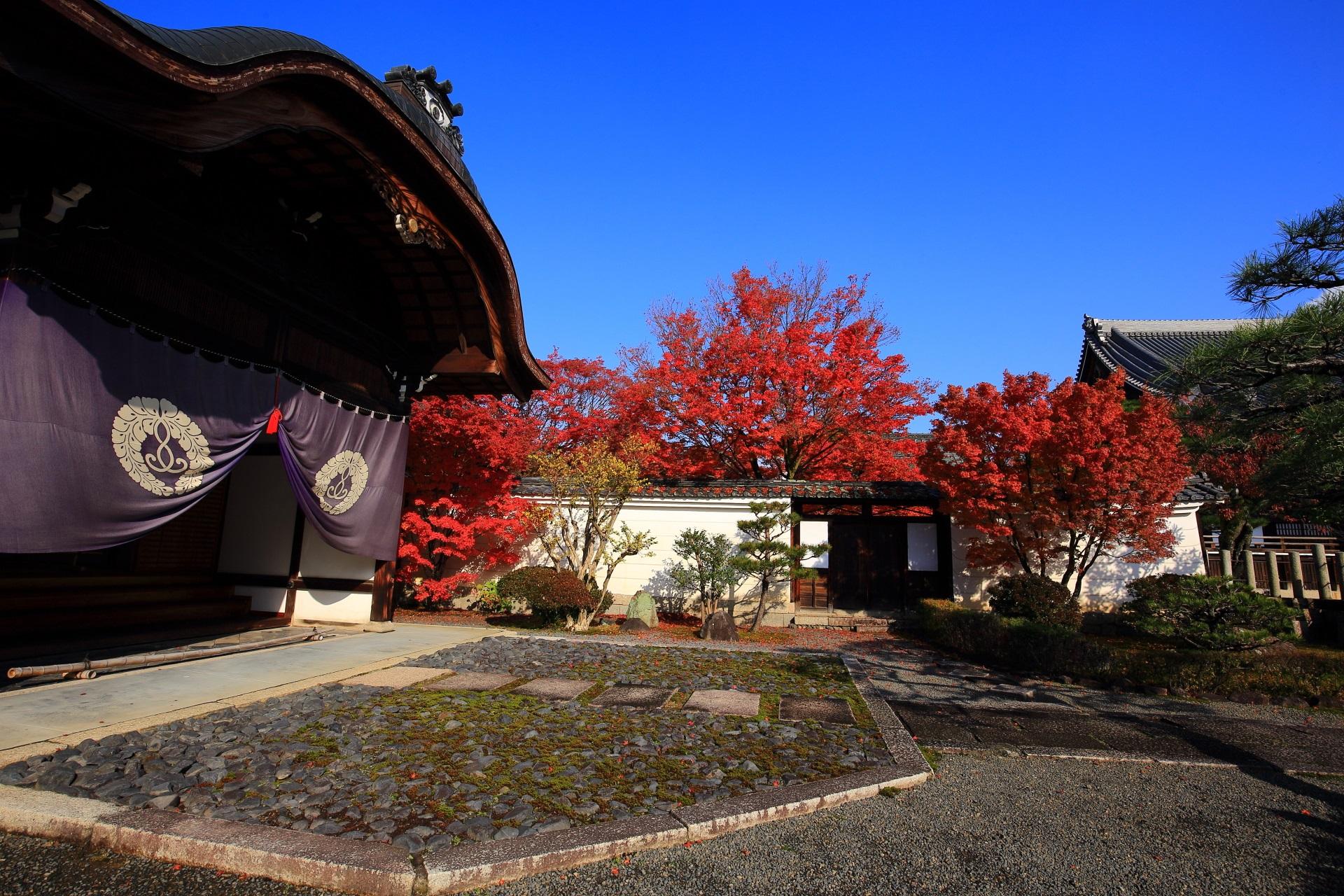 妙覚寺の玄関と燃え上がるような紅葉の絵になる秋の風景