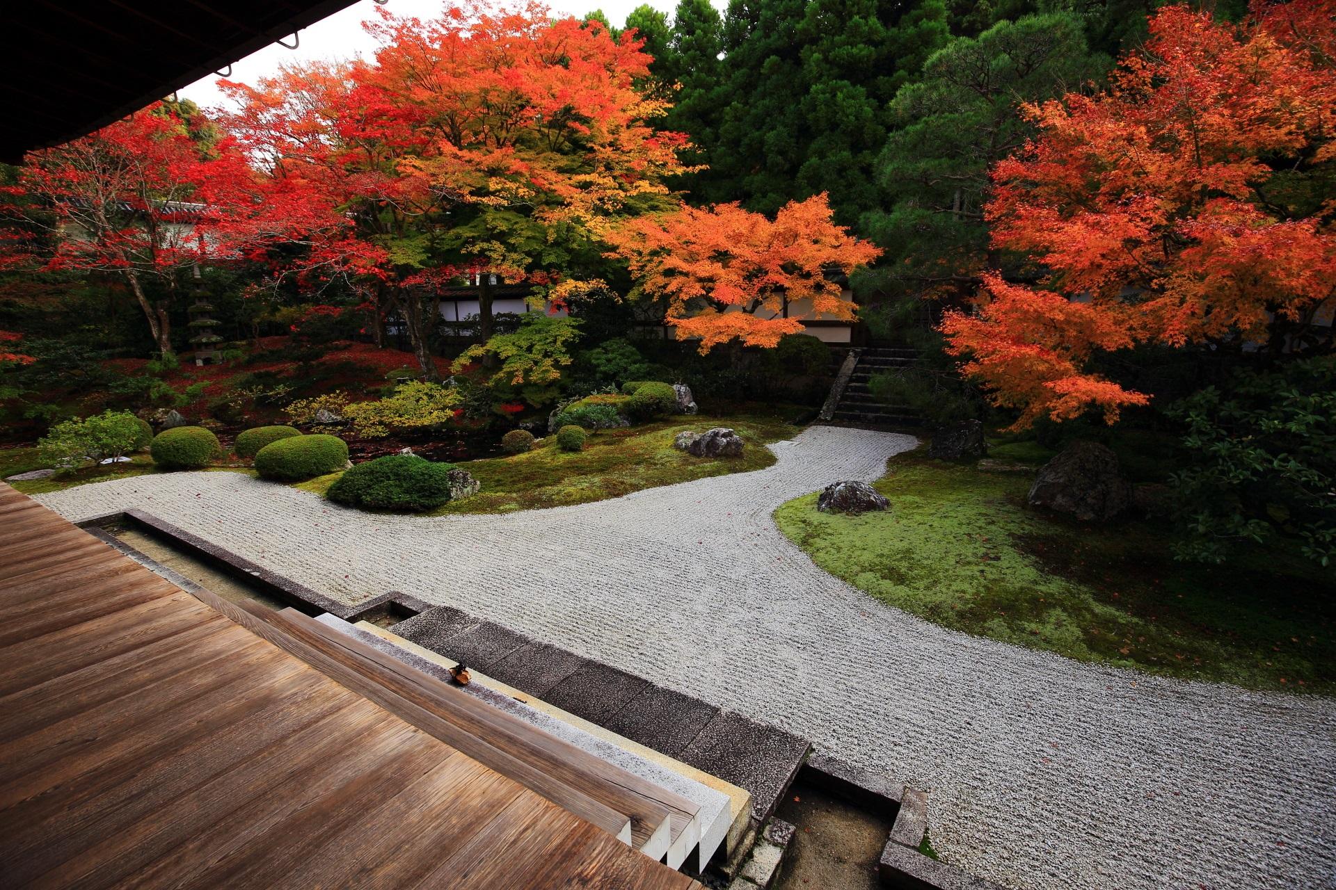 泉涌寺の素晴らしい御座所庭園の紅葉や秋の情景