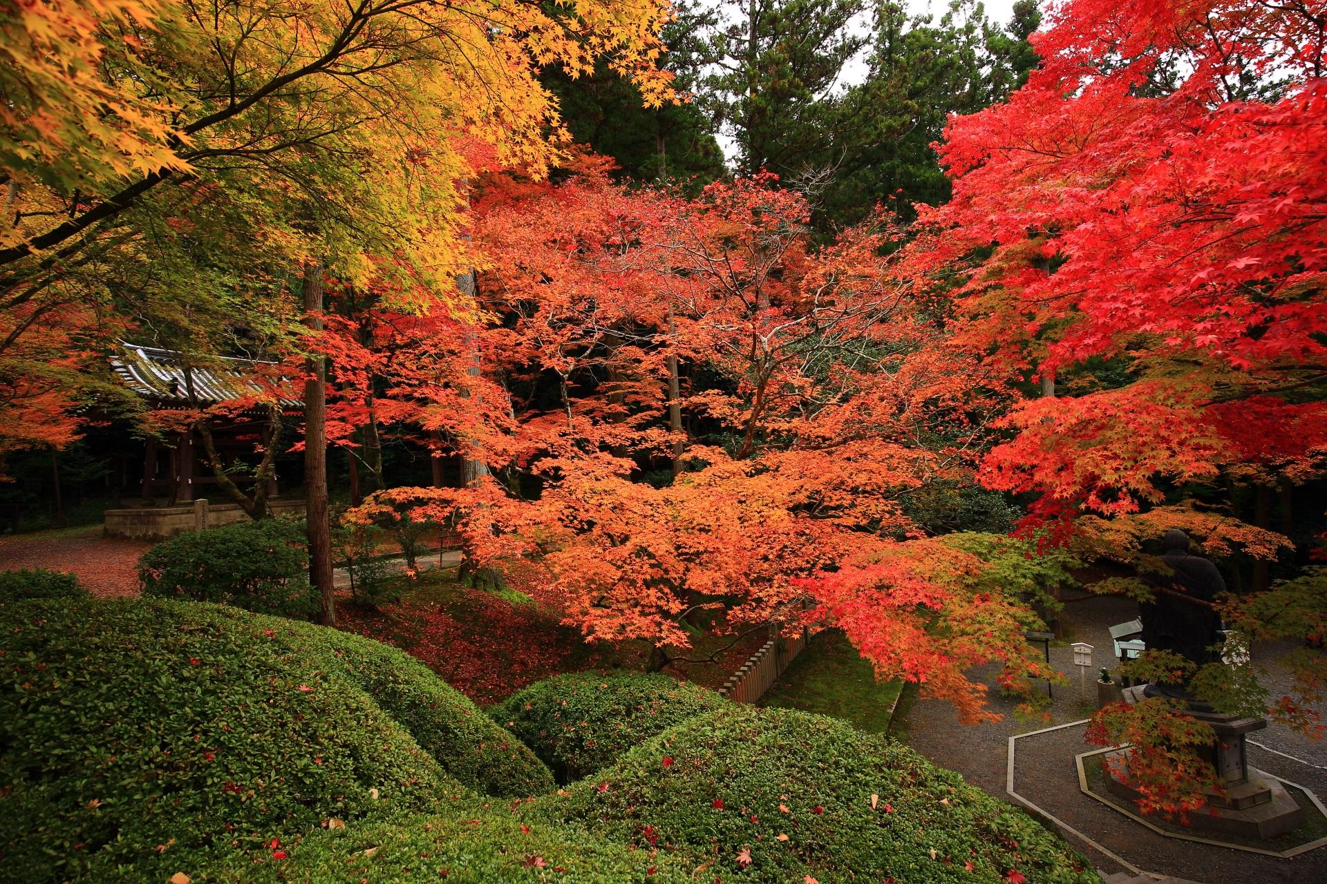 今熊野観音寺の圧巻の秋色の世界
