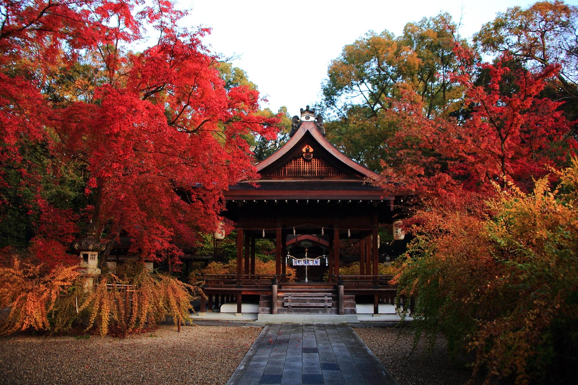 絶品の紅葉と彩りにつつまれる晩秋の梨木神社