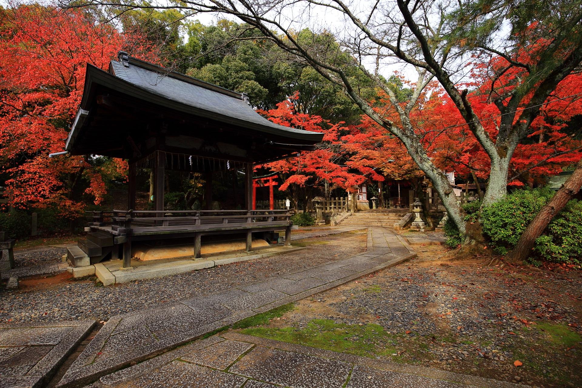竹中稲荷神社の拝殿や境内をつつむ絶品の秋色の空間