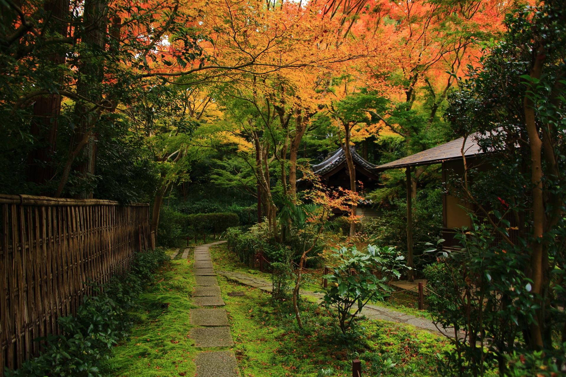 上は暖かな紅葉につつまれる来迎院の庭園と参道