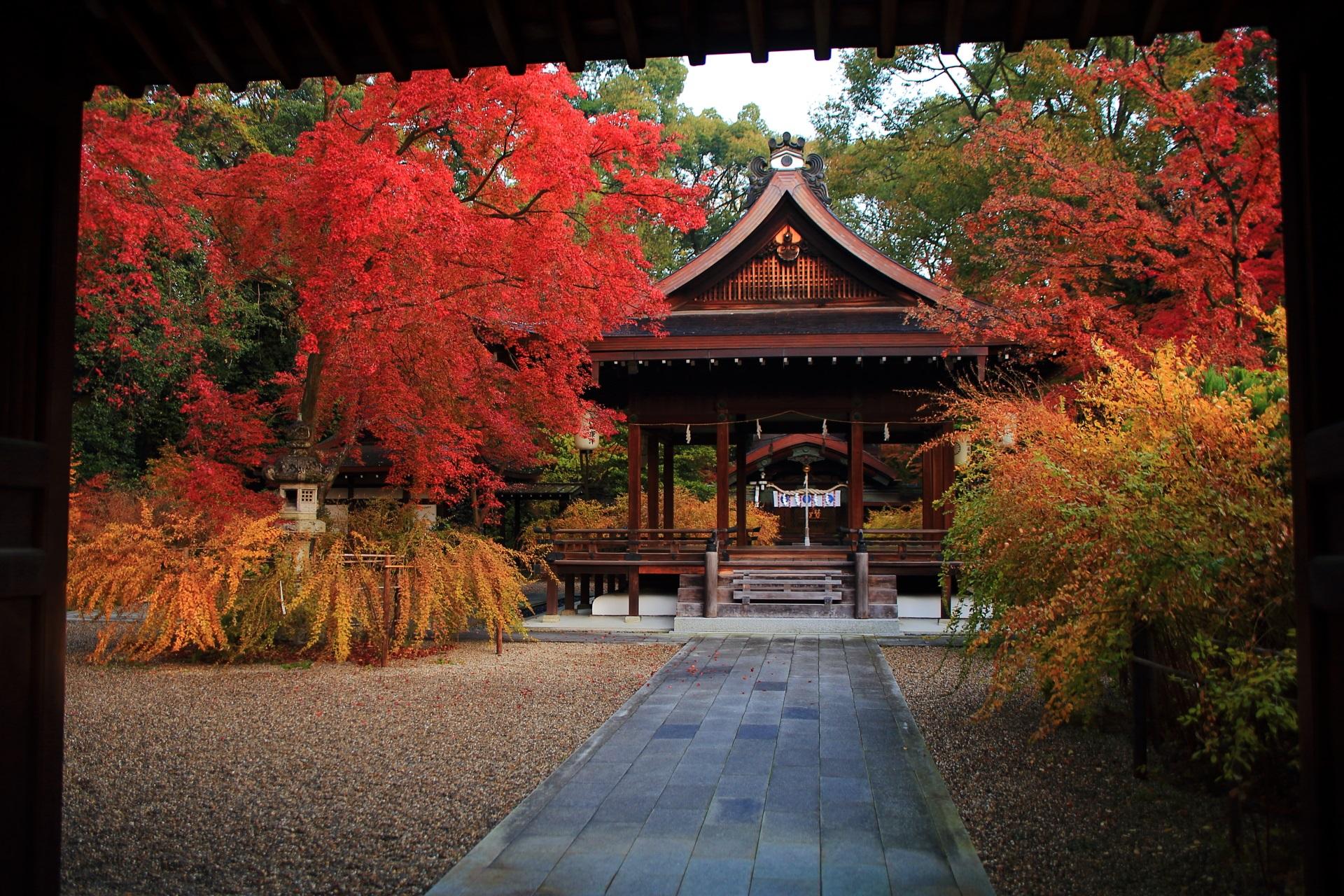 梨木神社の神門の額縁の紅葉