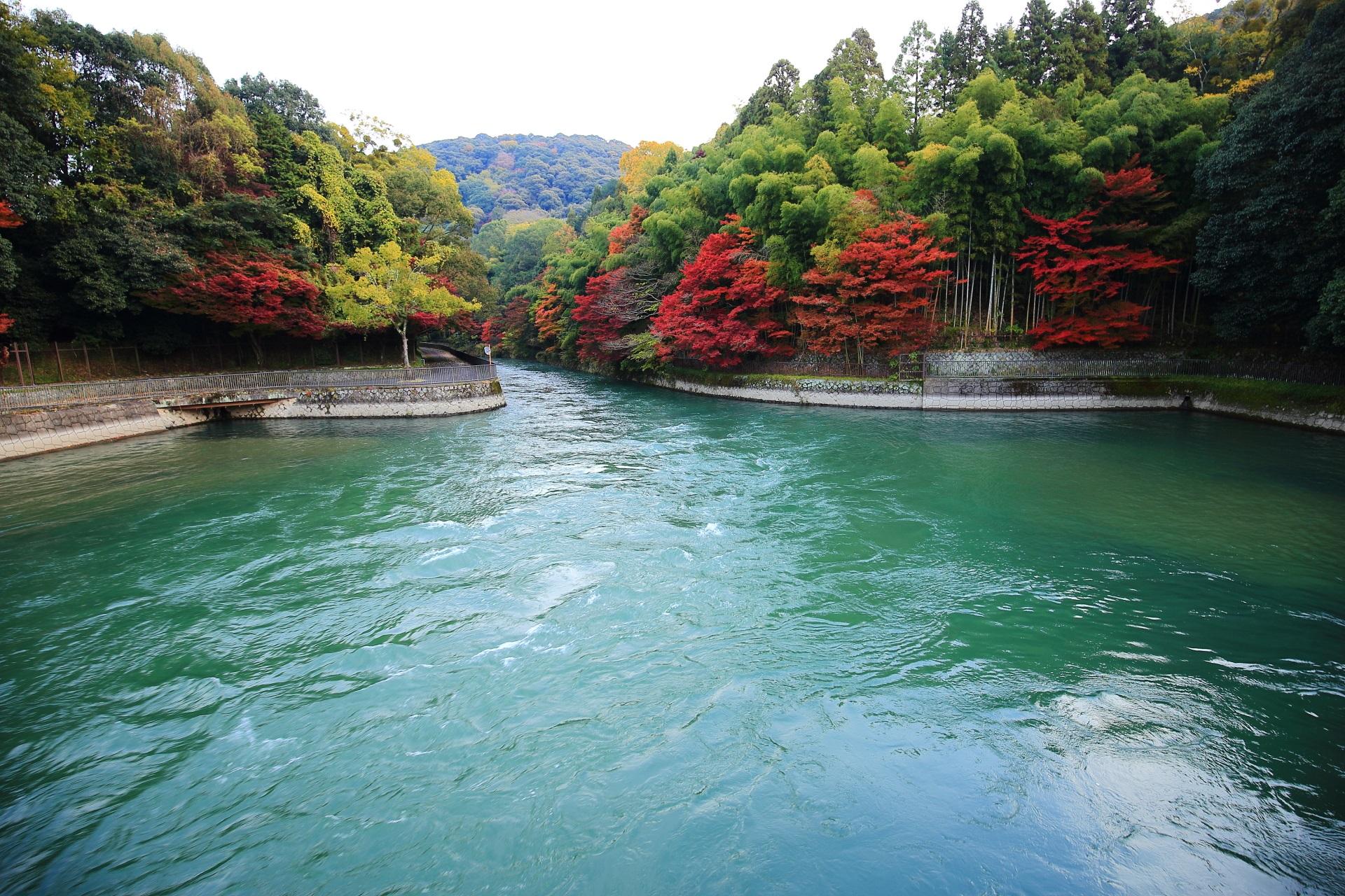 宇治川の観流橋から眺めた鮮やかな紅葉