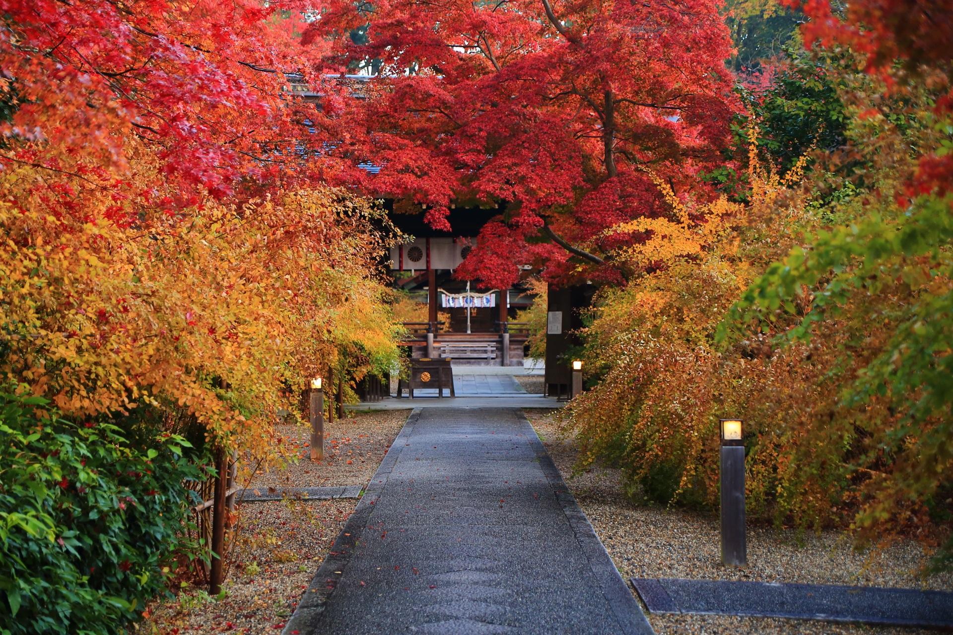 絶品の梨木神社の晩秋の参道