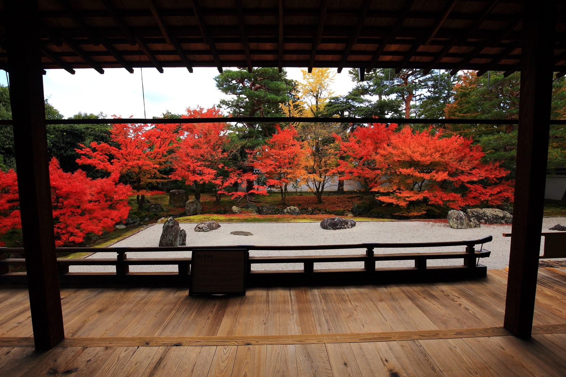 相国寺開山堂庭園の素晴らしい紅葉と秋の情景