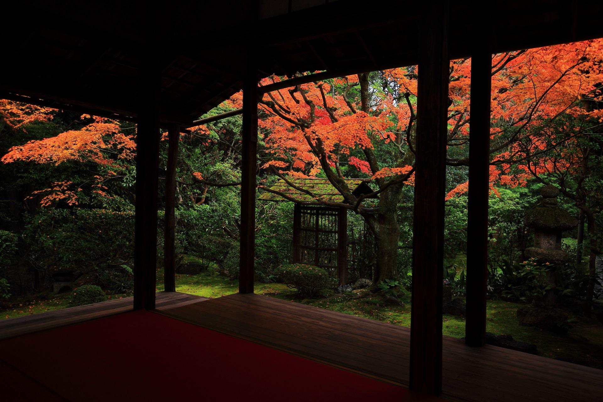書院の柱越しに眺める侘びの庭の額縁の紅葉