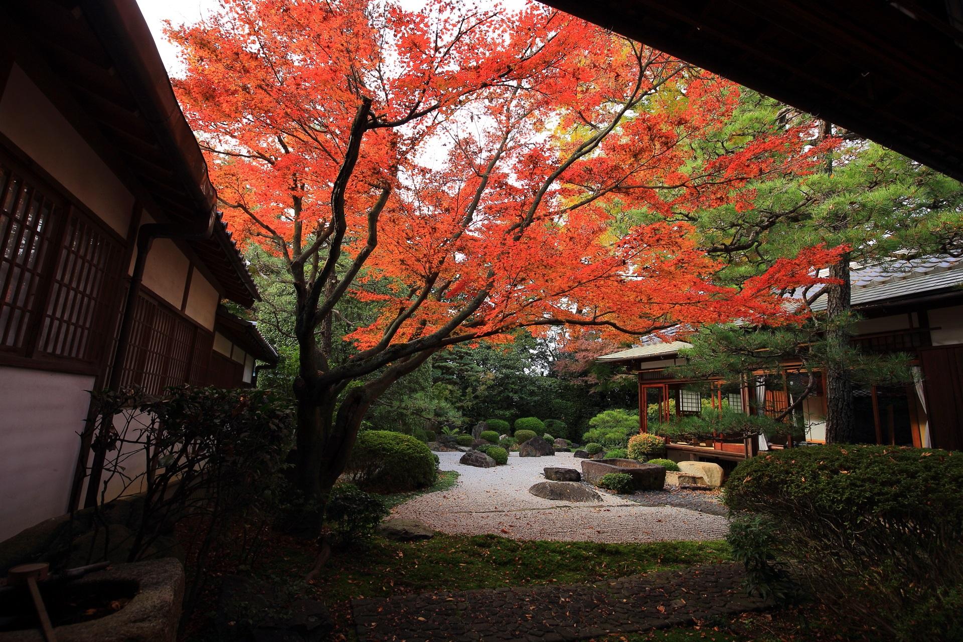 御香宮神社 紅葉 秋の枯山水を彩る伏見のもみじ