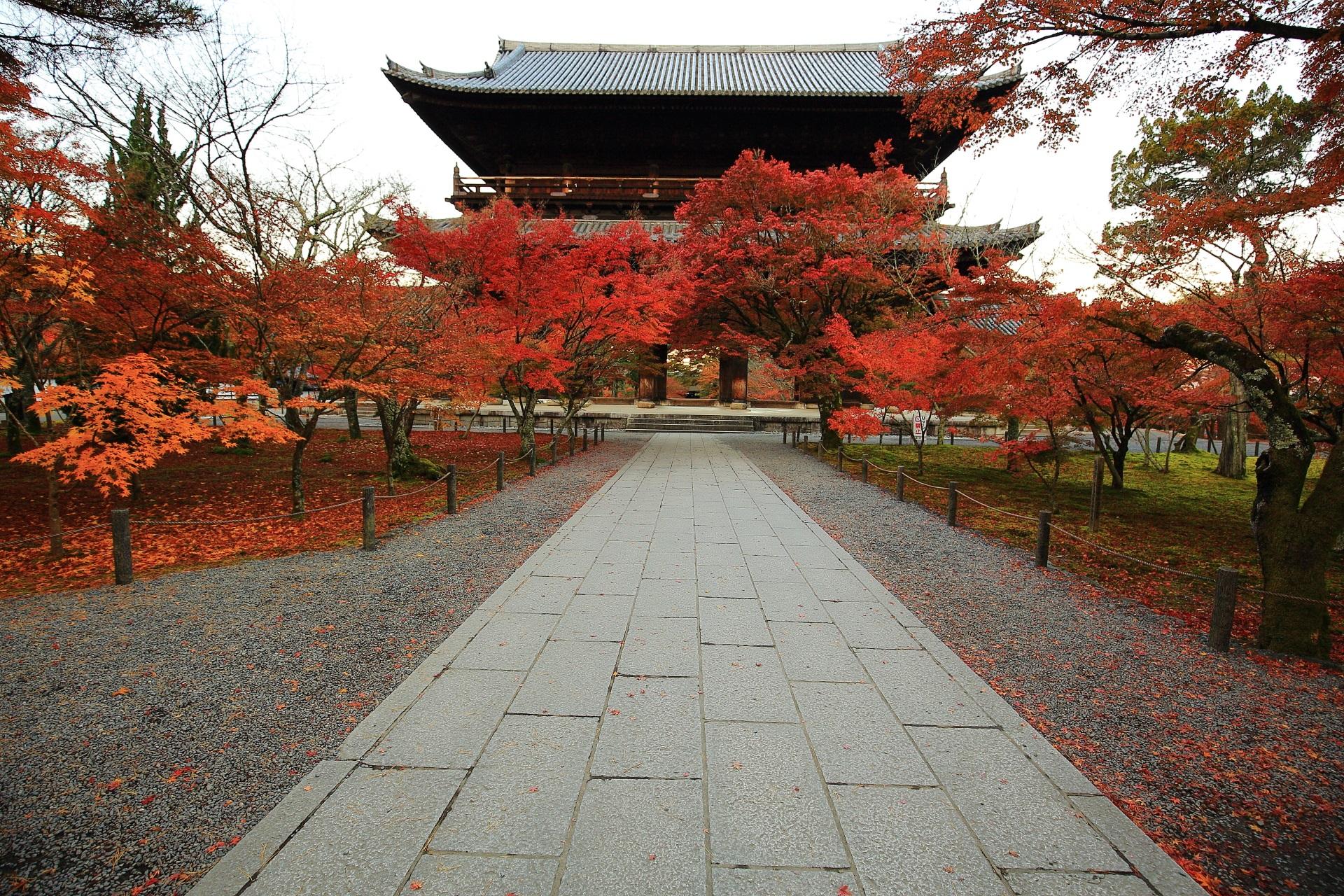 南禅寺 紅葉 秋に彩られる圧巻のもみじの名所