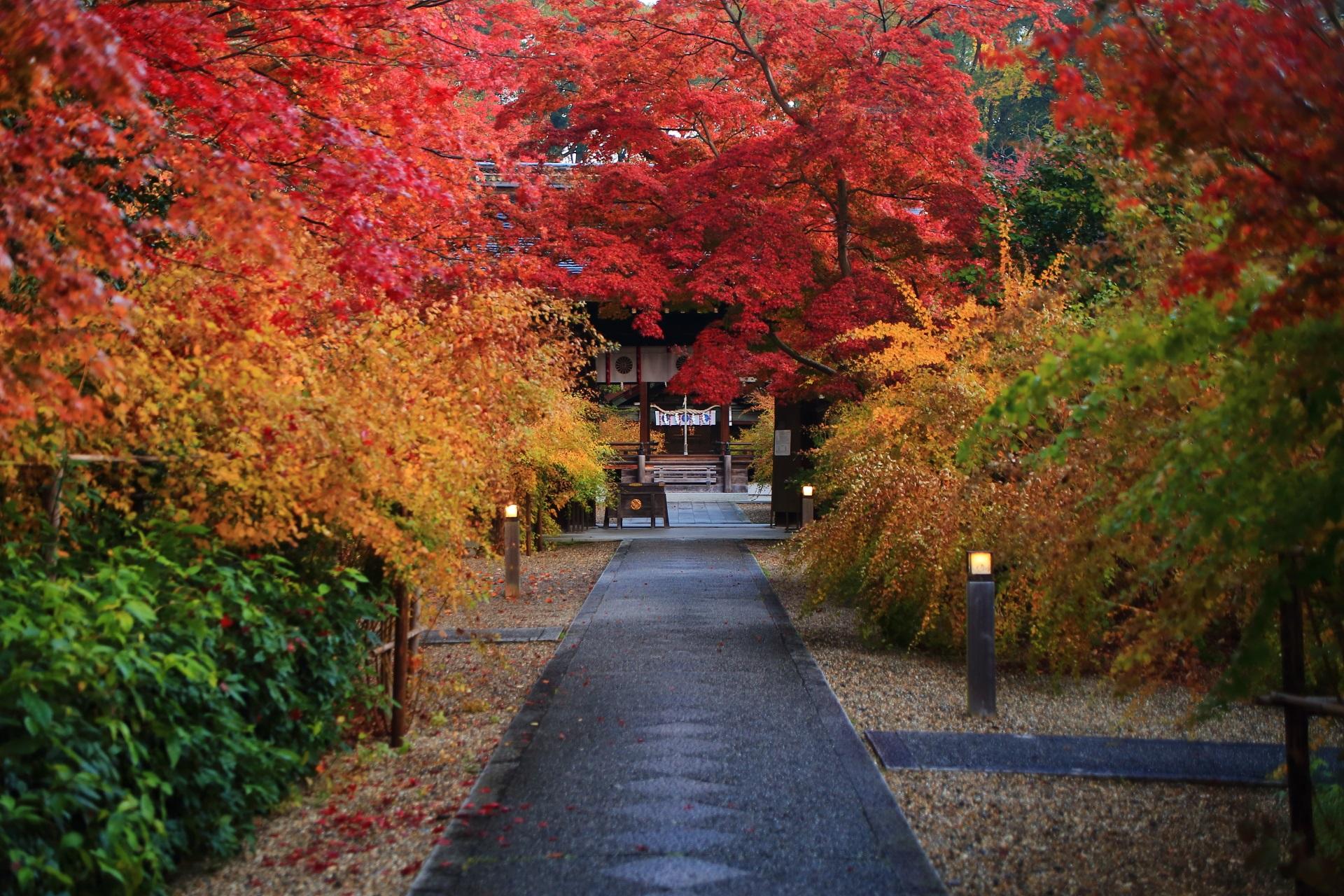 多彩な秋色や多種多様な植物で溢れる梨木神社の参道