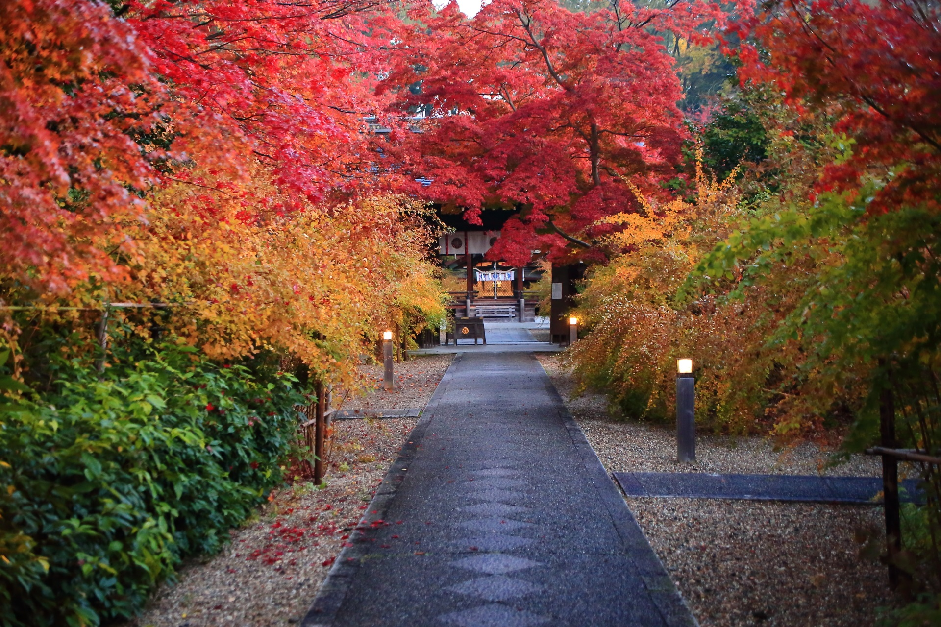 秋色の極上の参道
