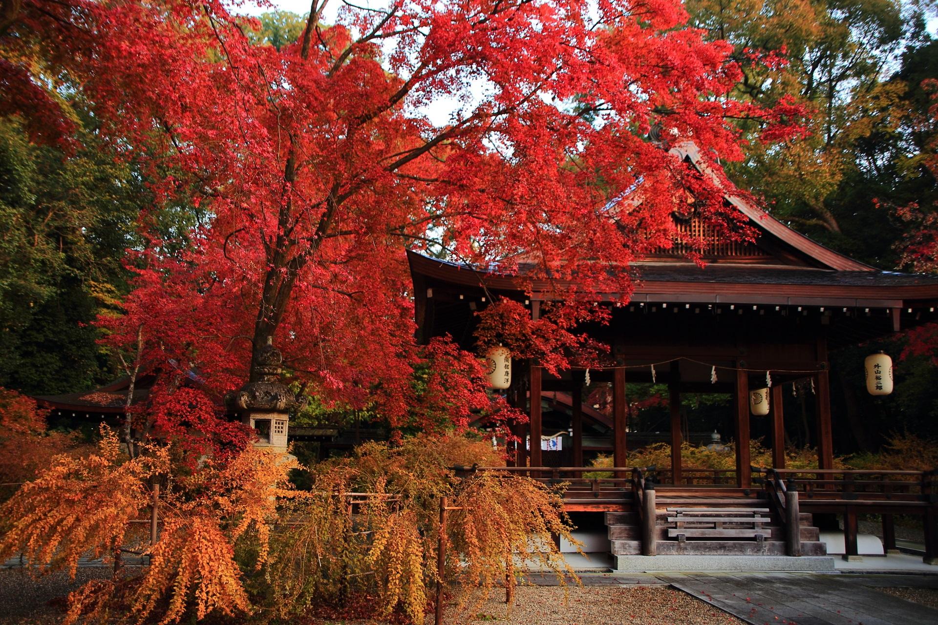 梨木神社 紅葉 秋に彩られる萩ともみじの名所