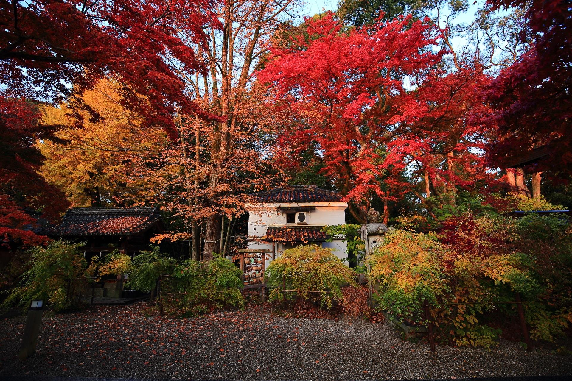 秋の梨木神社