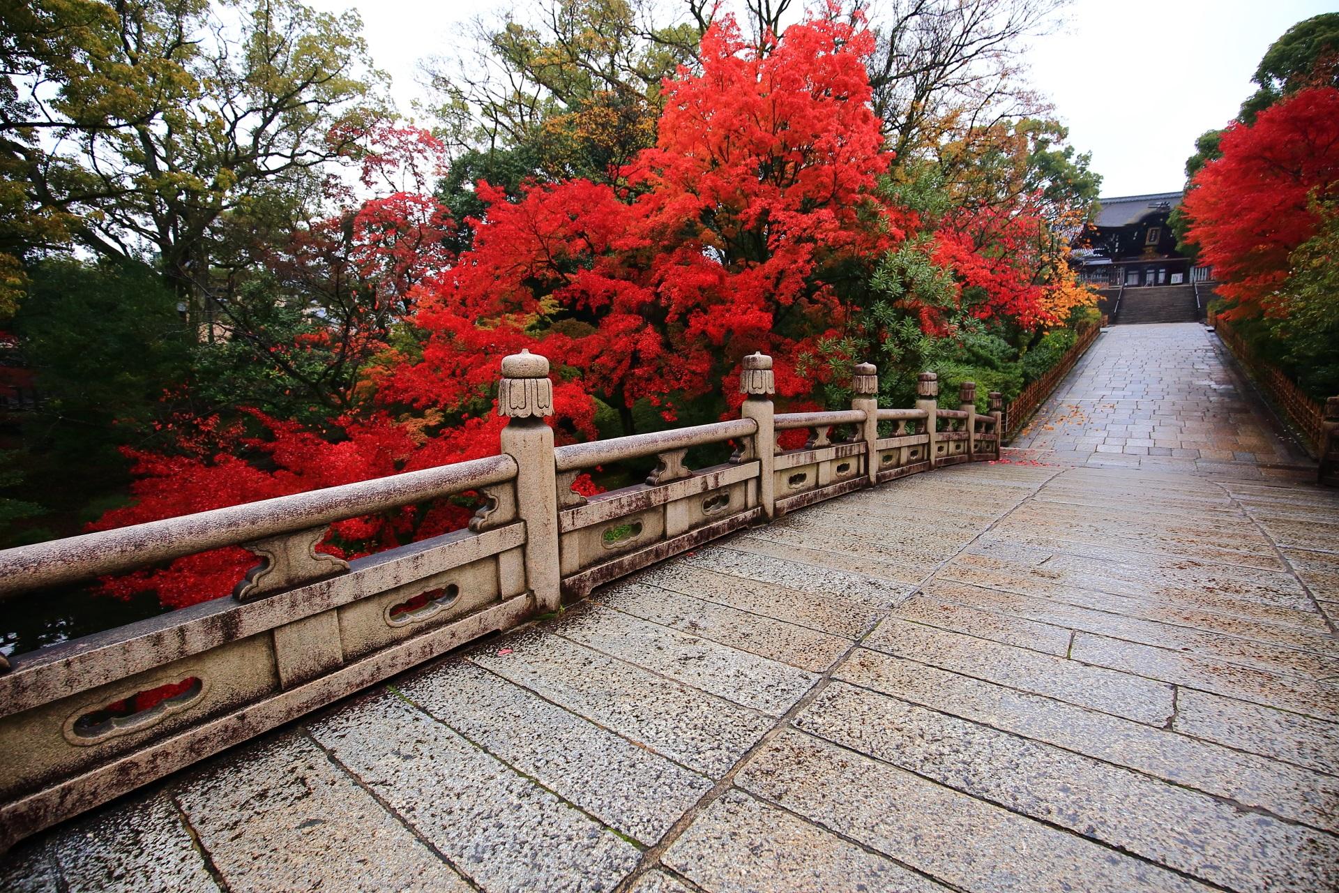 大谷本廟の素晴らしい紅葉と情景