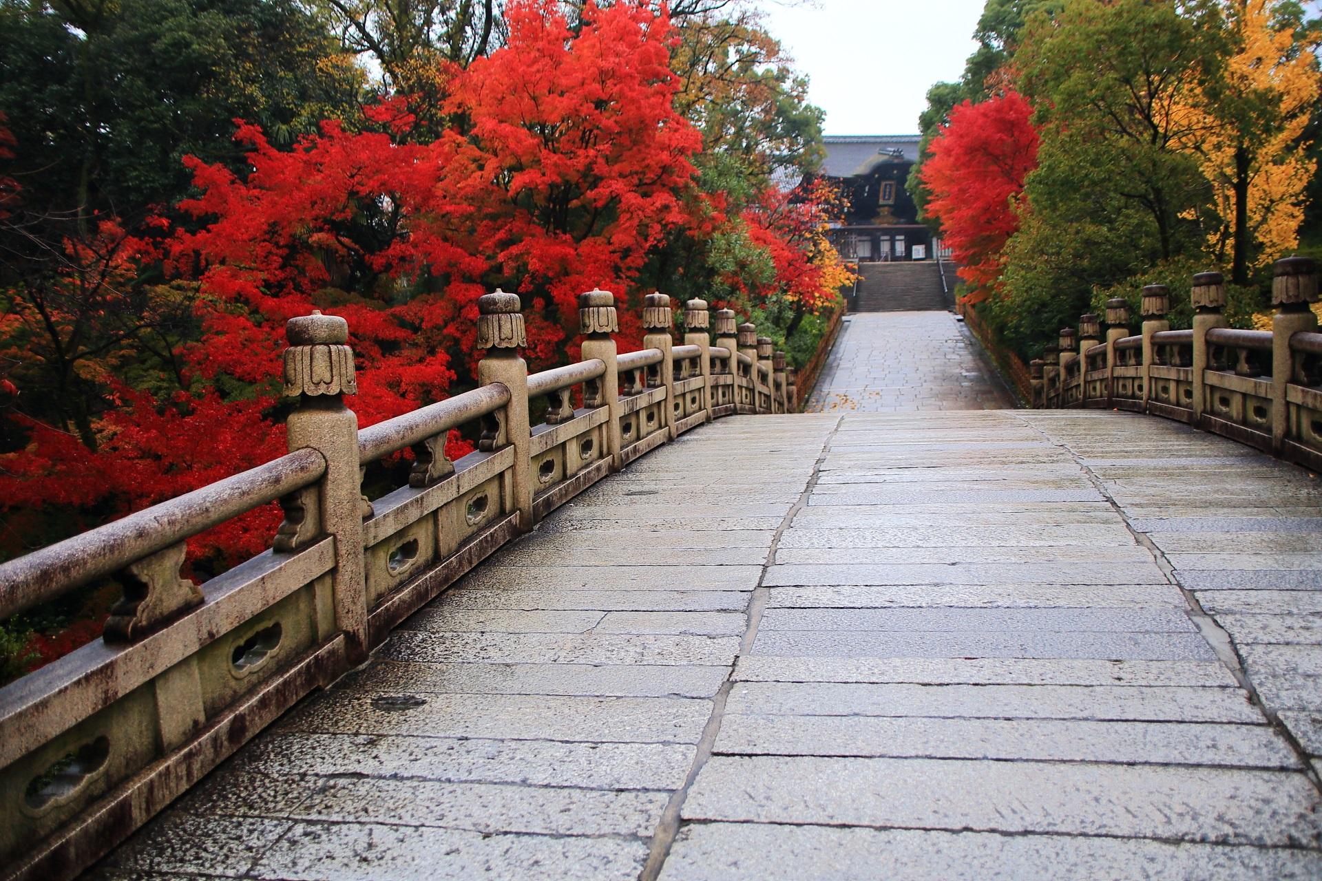 大谷本廟 紅葉 風情ある石橋と真っ赤なもみじ