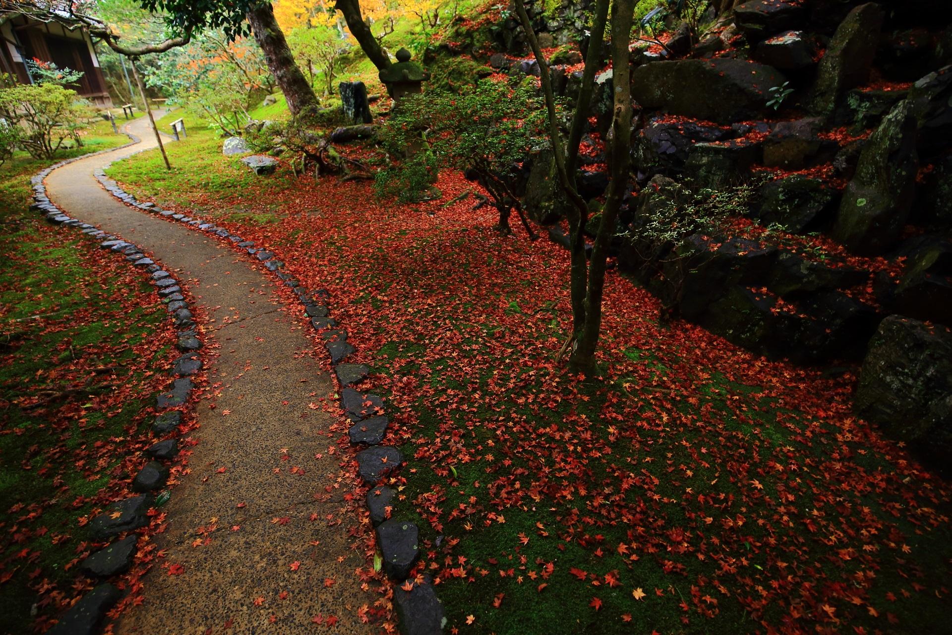 霊鑑寺 紅葉 庭園を彩る極上の散りもみじの名所