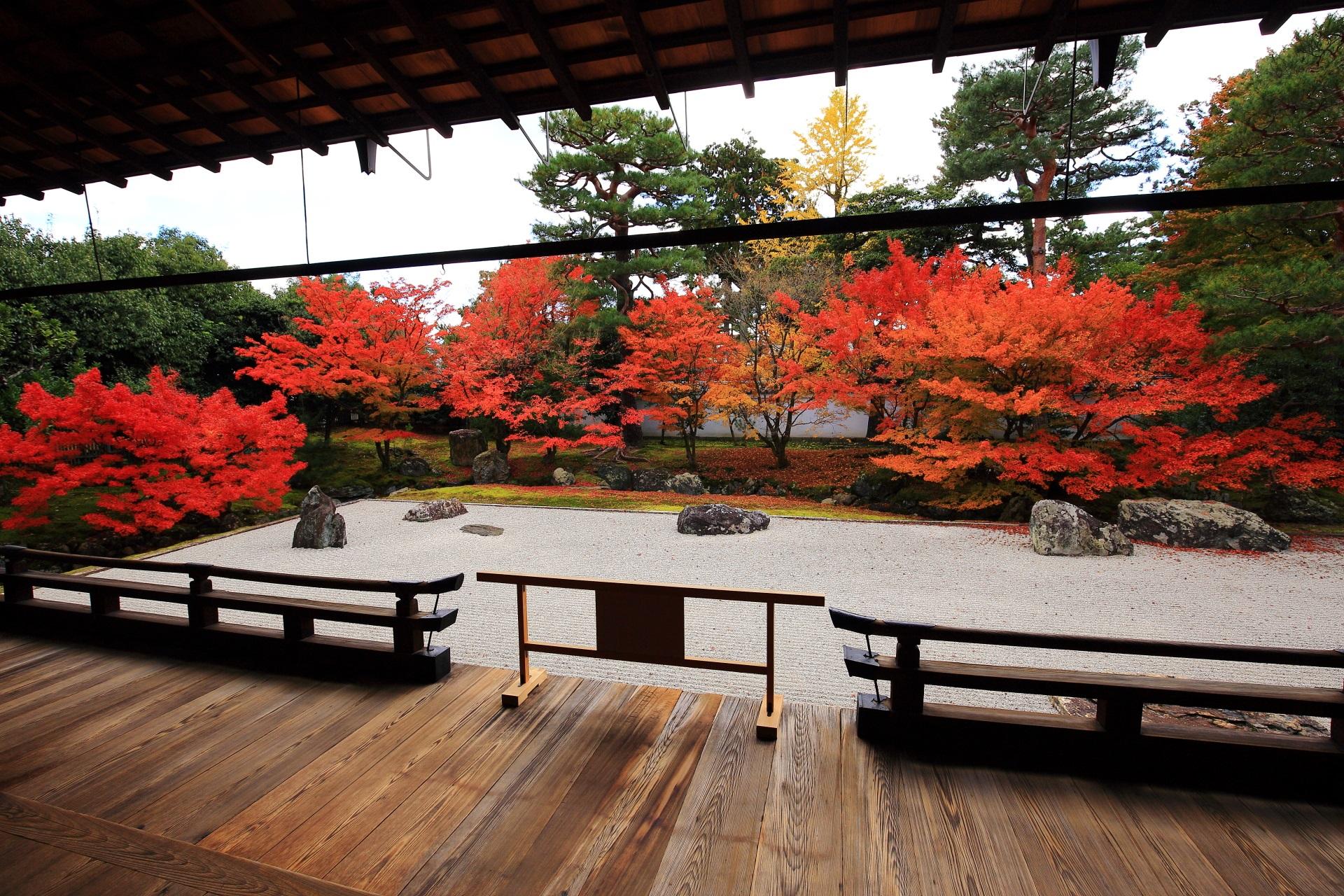 相国寺 紅葉 上品な彩りと鮮やかな開山堂庭園