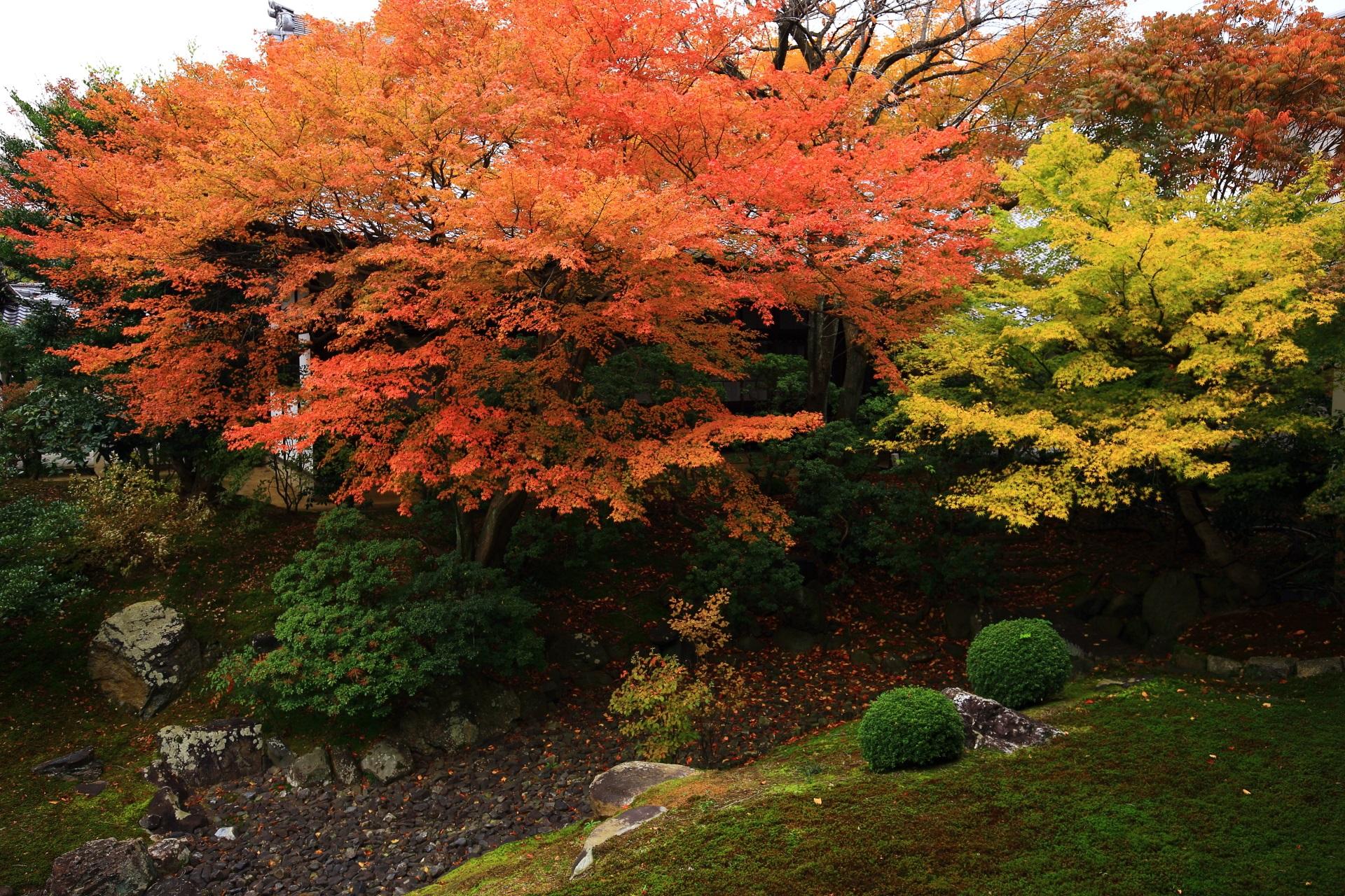秋色にそまる裏方丈庭園