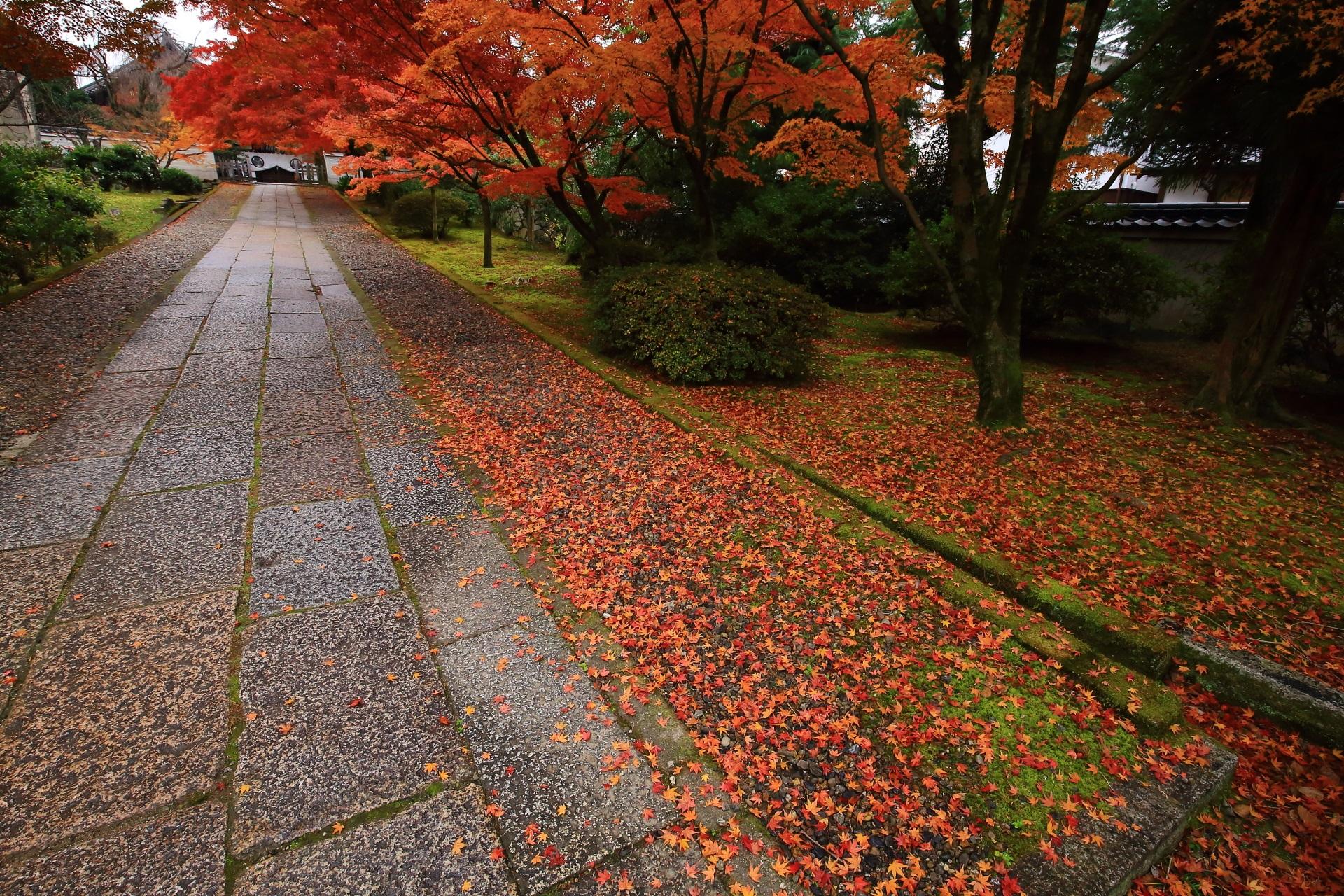 養源院の散り紅葉