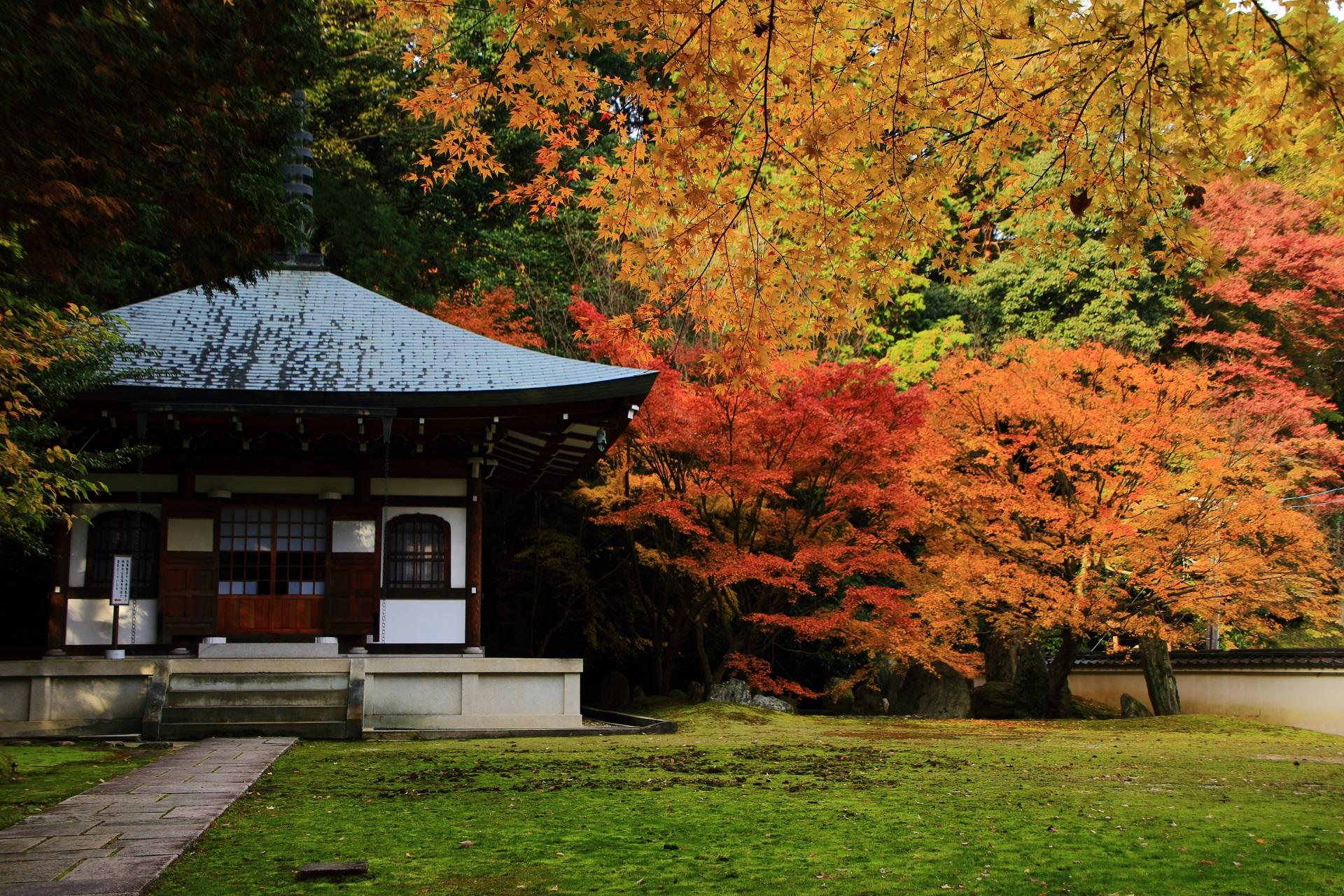 善能寺 紅葉 ひっそりと佇む秋色の仙遊苑と祥空殿