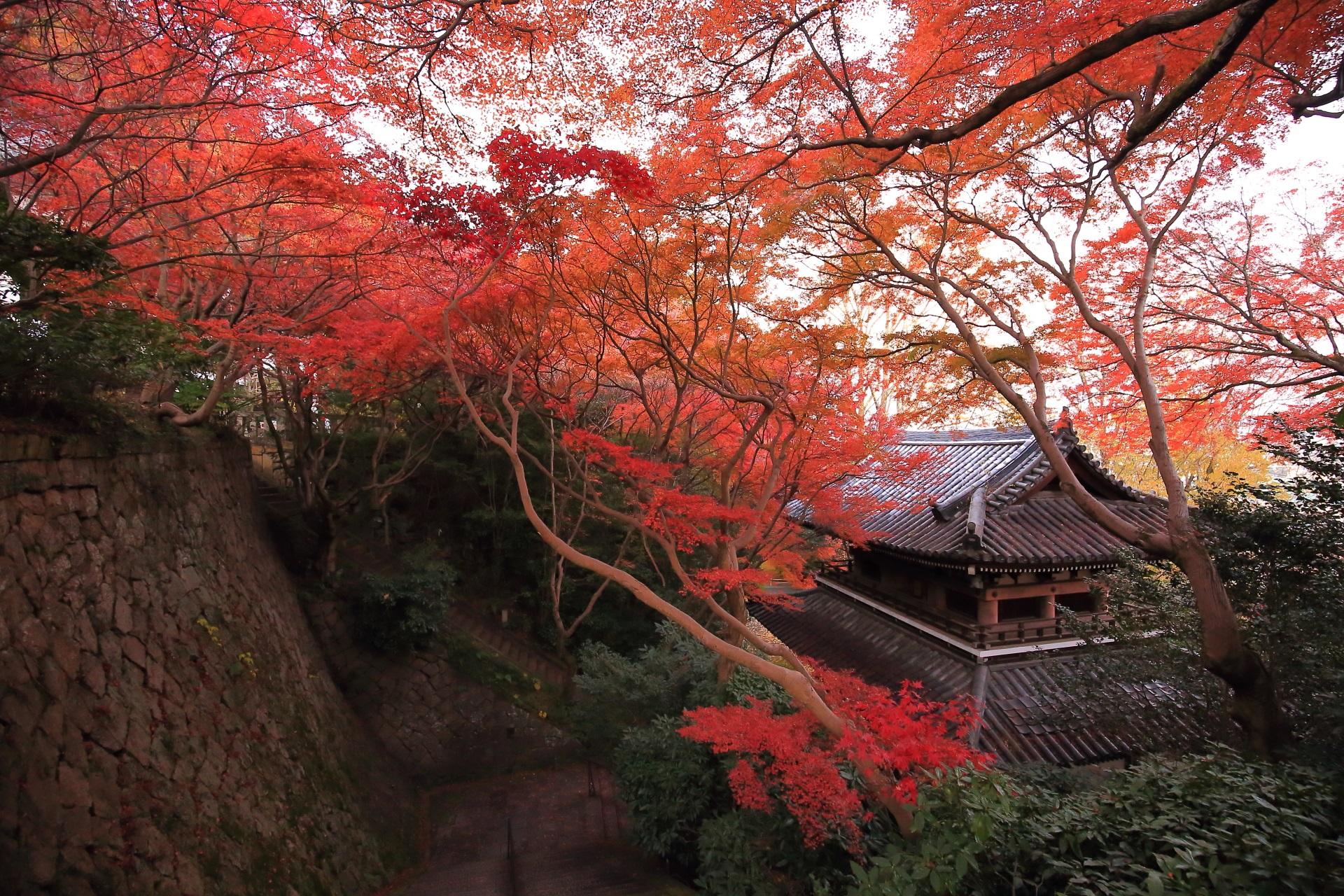 雄大な仁王門と空をつつむ紅葉