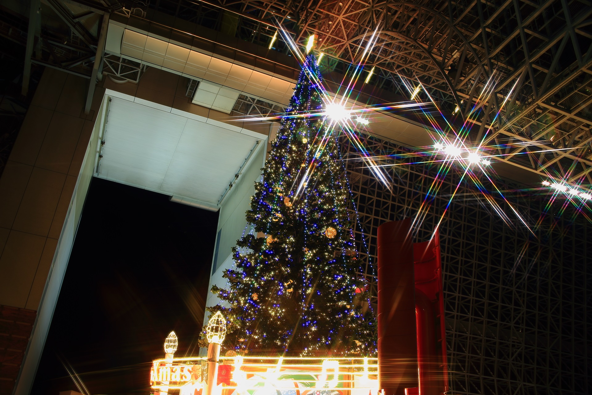 下から見上げる巨大クリスマスツリー