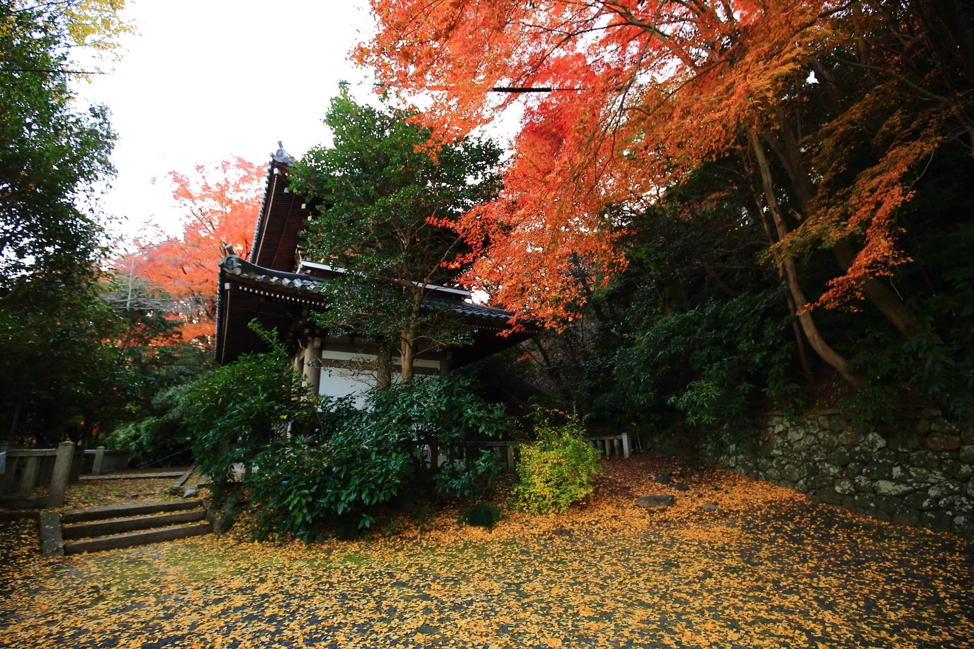 仁王門を染める紅葉と散り銀杏