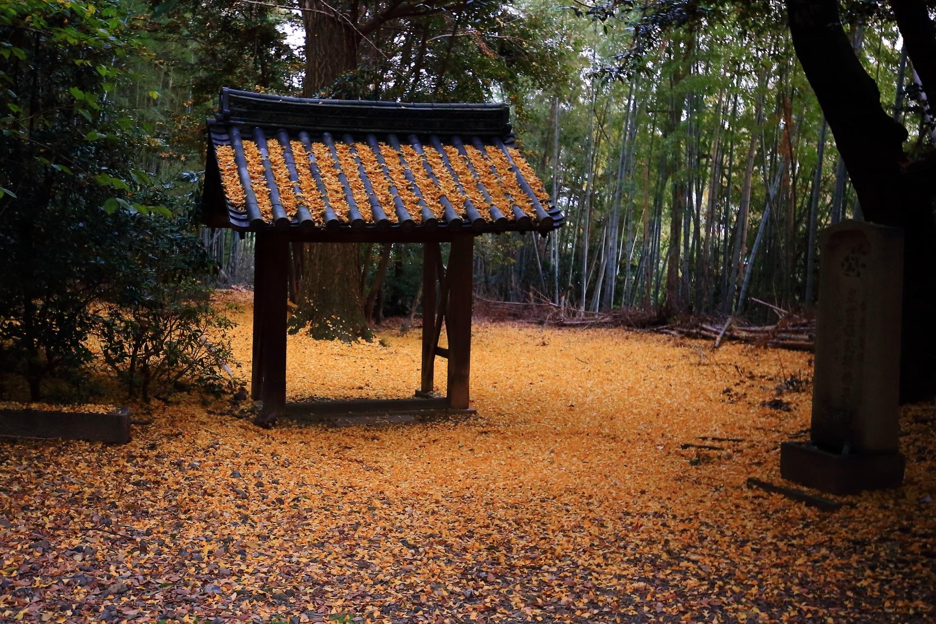 山崎聖天の散り銀杏と竹林の空間