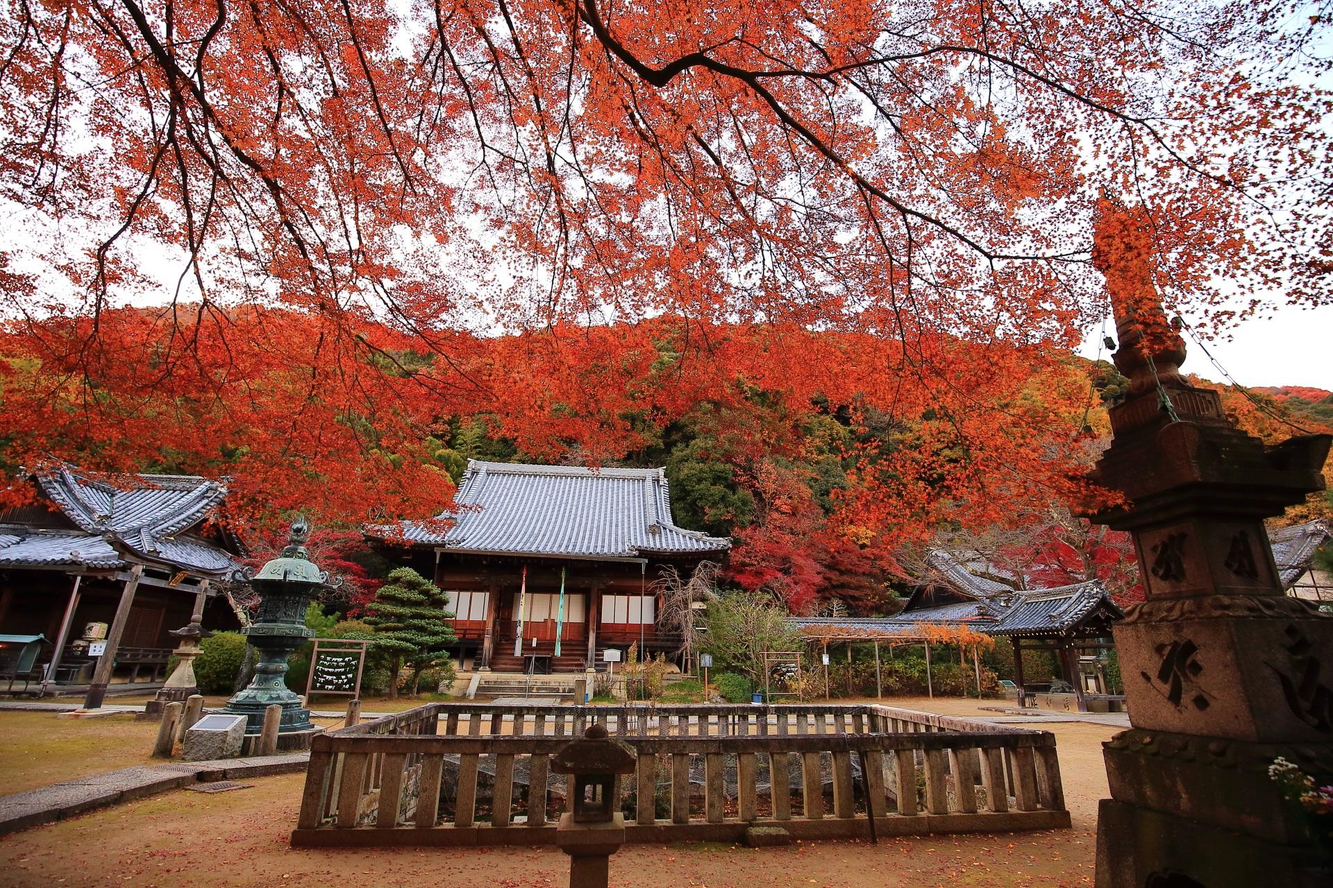 山崎聖天の本堂と聖天堂の紅葉と背後の天王山