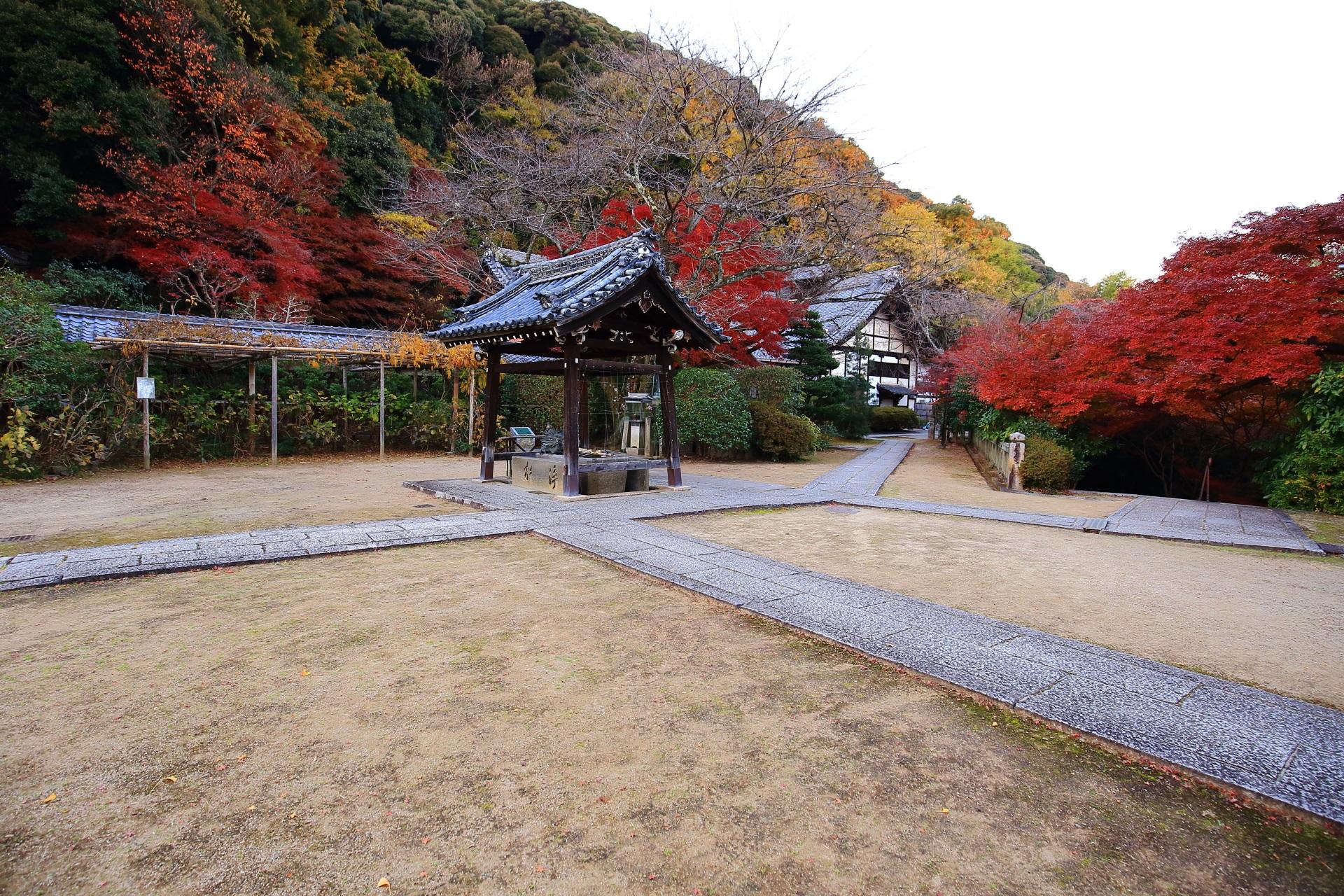 山崎聖天の境内を染める多彩な紅葉