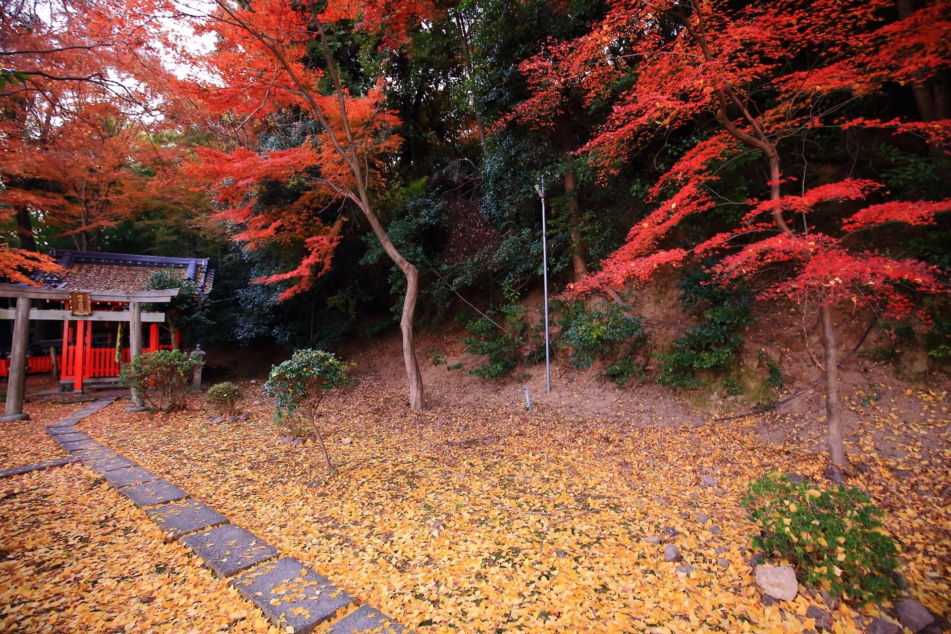 山崎聖天の鎮守社を染める鮮やかな紅葉と淡い散り銀杏