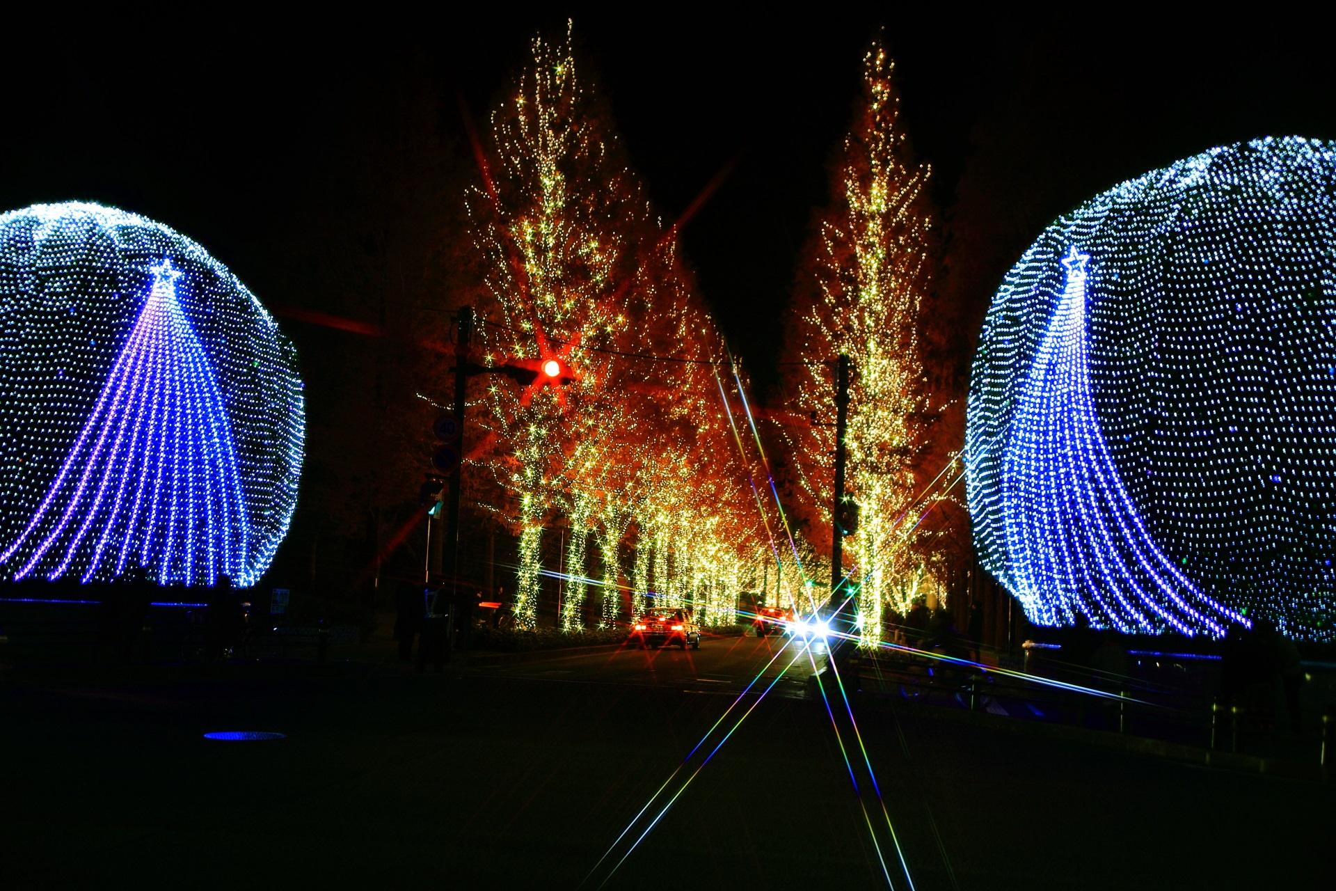 光のプロムナードとヤマモモの木
