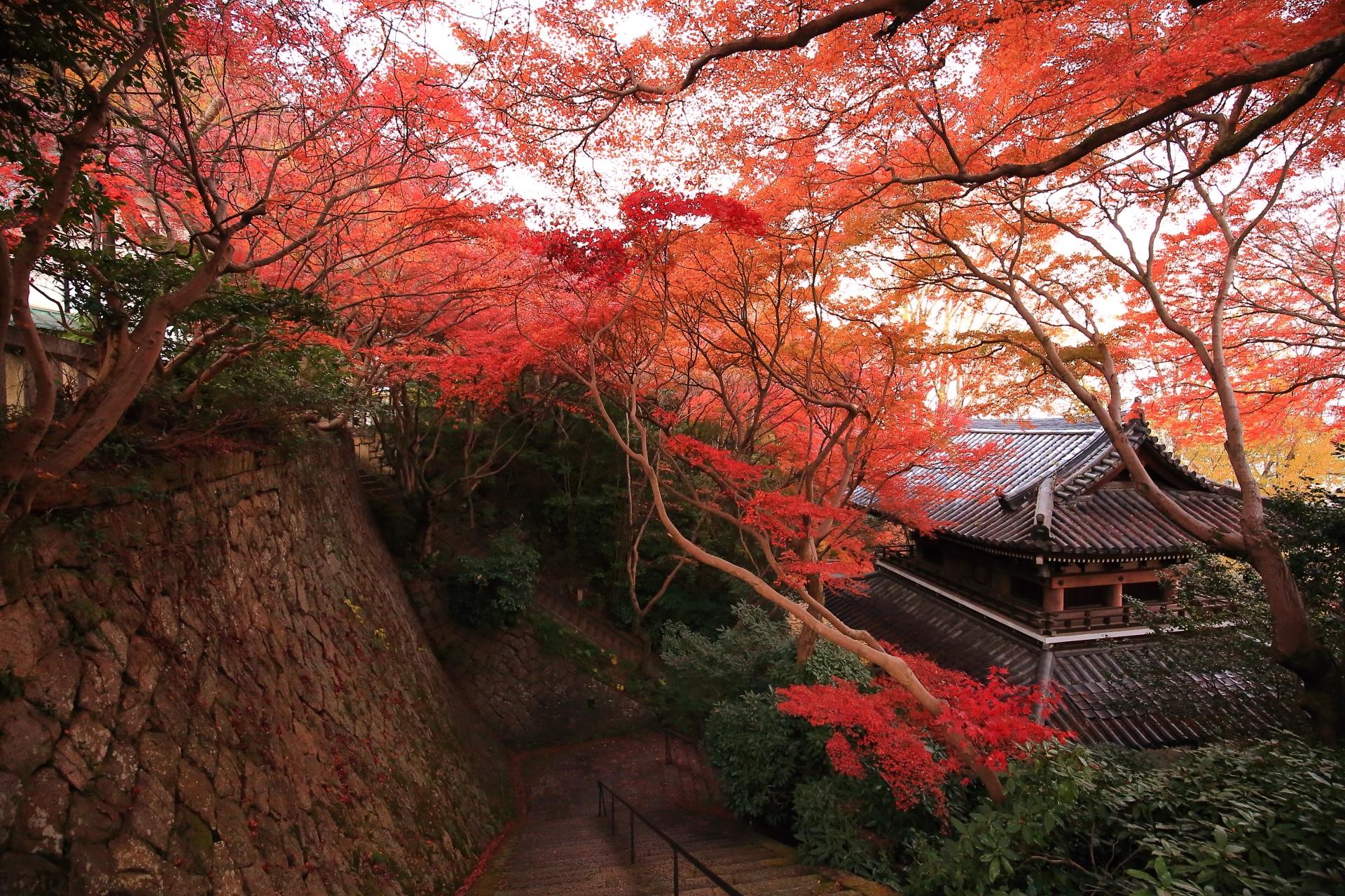 山崎聖天 紅葉 鮮やかな秋色の大山崎に佇む名所