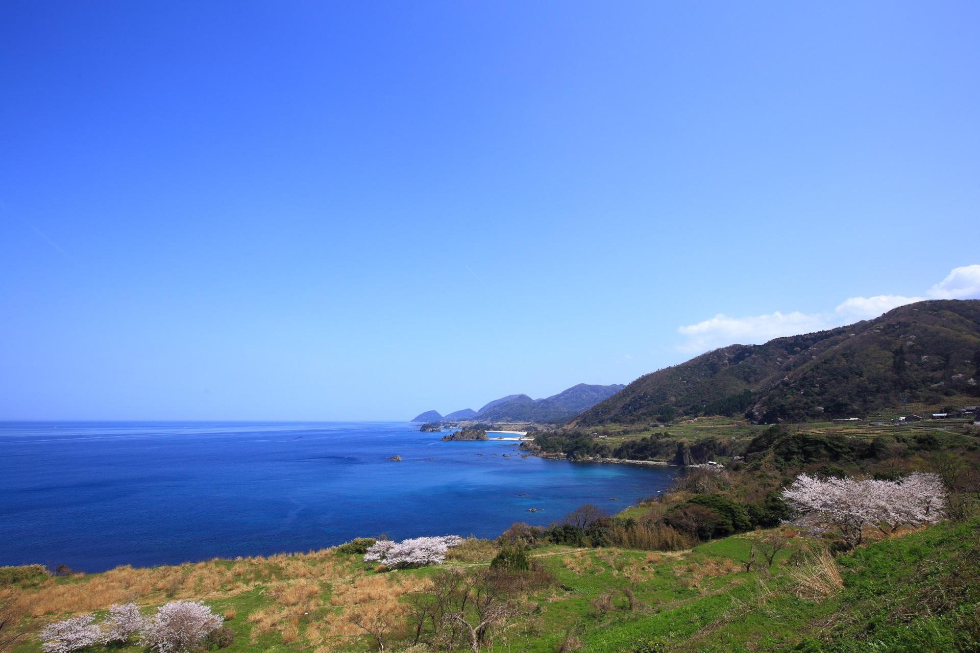 丹後松島の春の風景