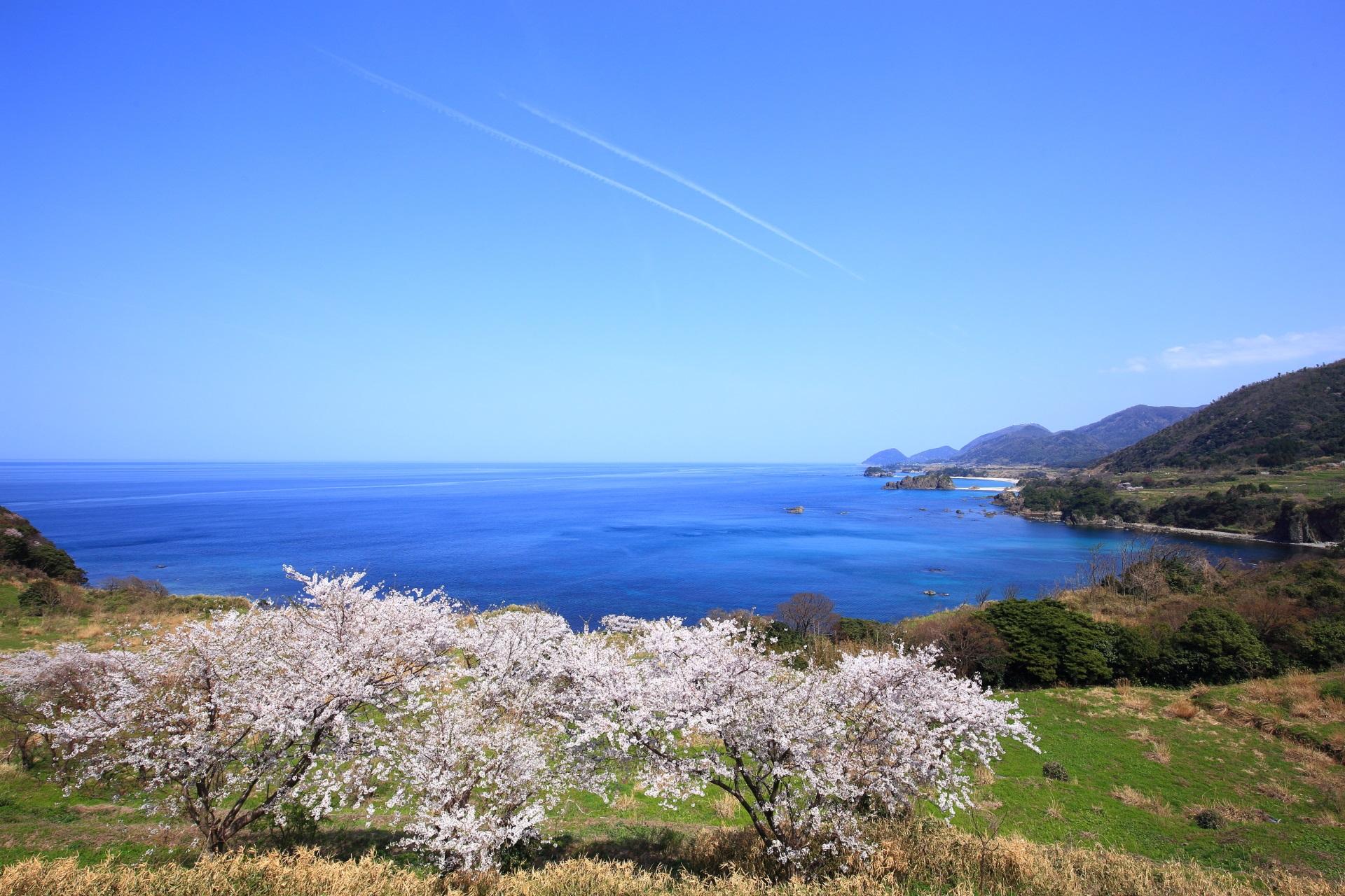華やかで幻想的な雰囲気もする春の丹後松島