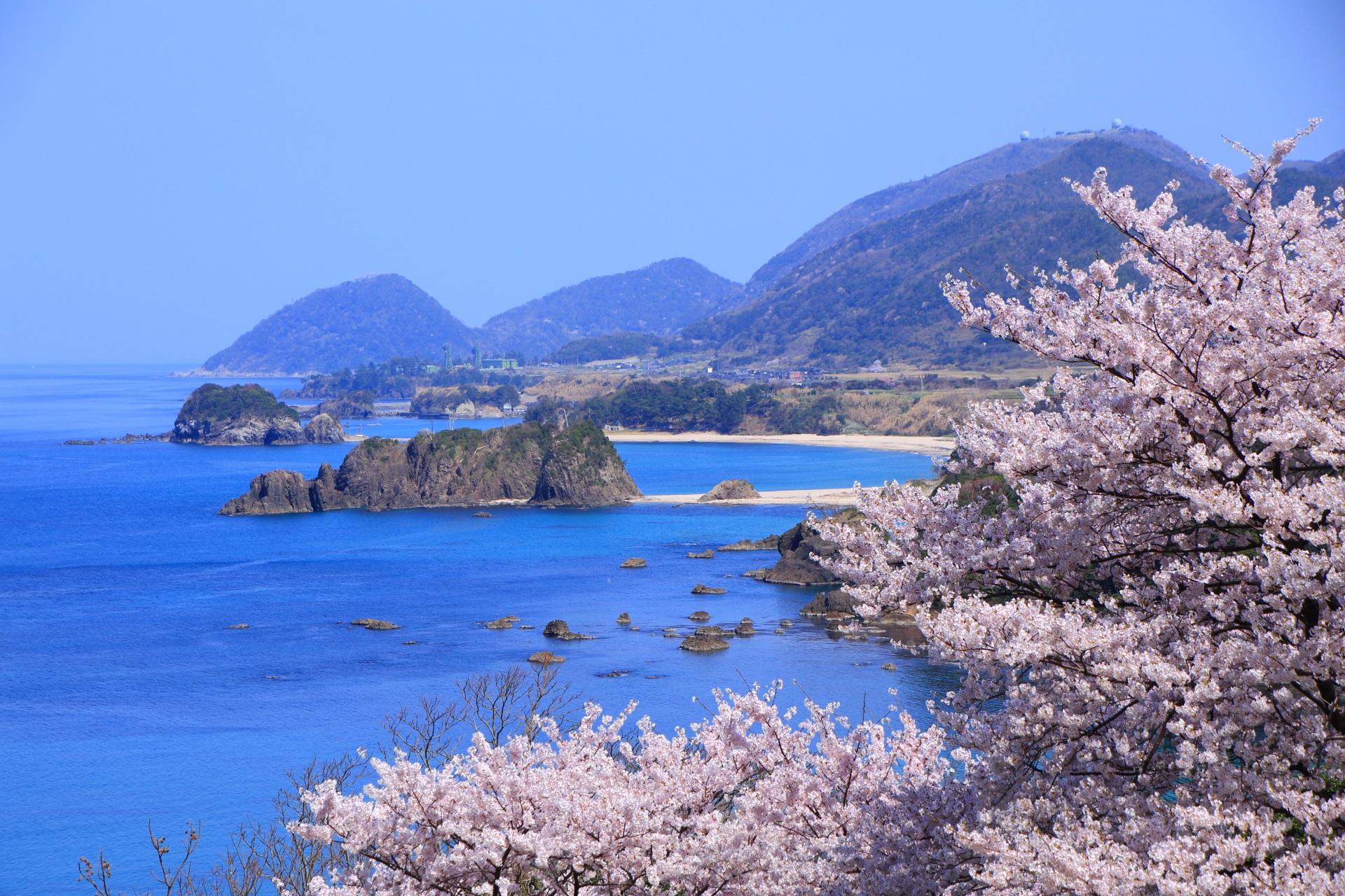 桜が加われば言葉を失う見事な景色となる丹後松島