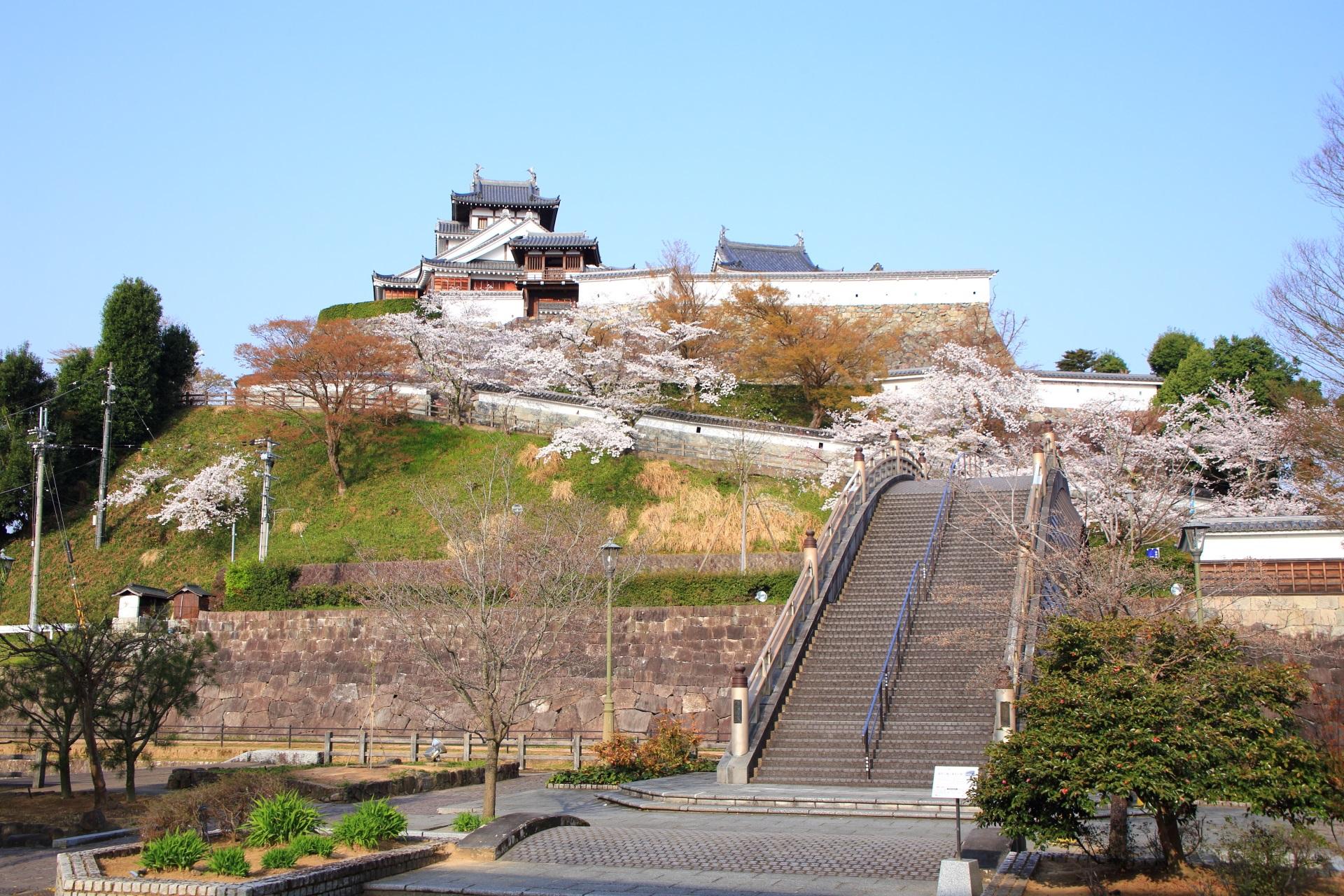 福知山城 桜